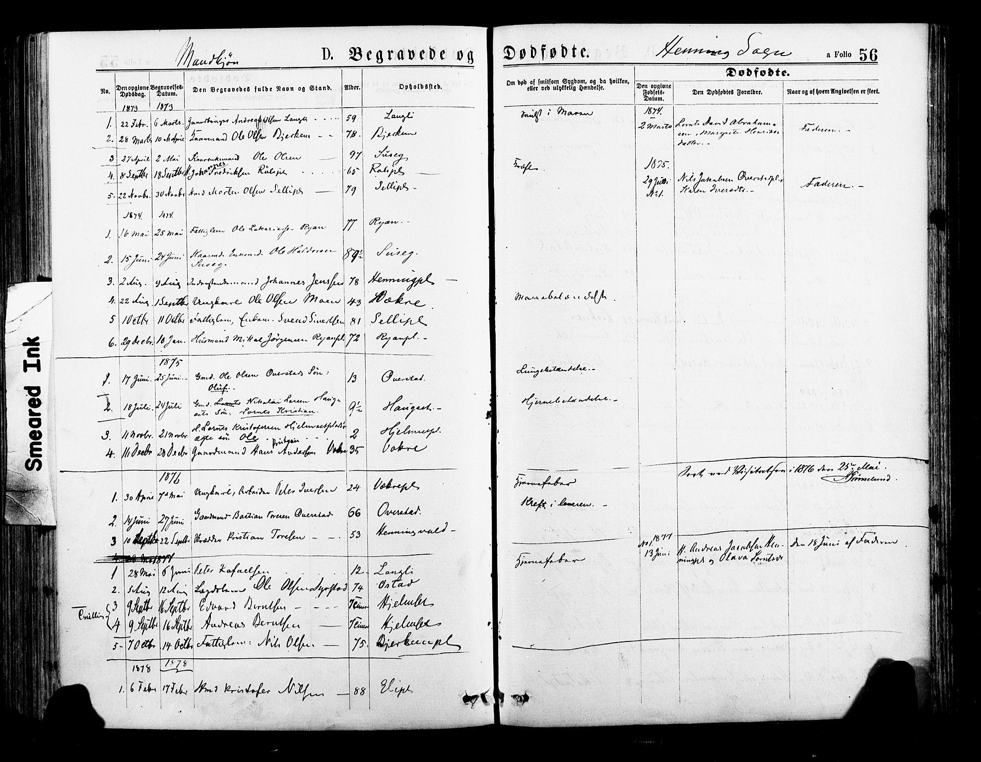 SAT, Ministerialprotokoller, klokkerbøker og fødselsregistre - Nord-Trøndelag, 735/L0348: Ministerialbok nr. 735A09 /3, 1873-1883, s. 56