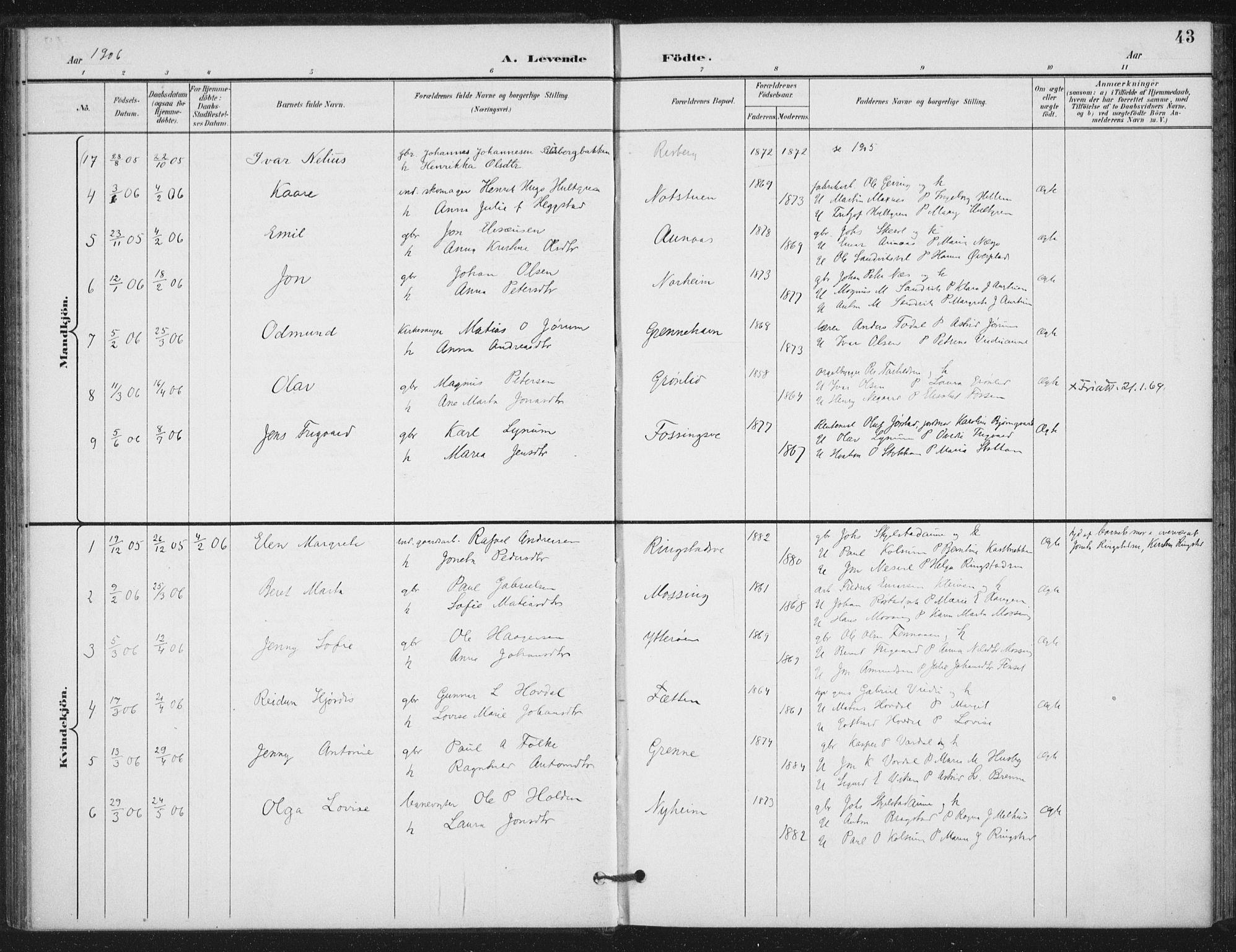 SAT, Ministerialprotokoller, klokkerbøker og fødselsregistre - Nord-Trøndelag, 714/L0131: Ministerialbok nr. 714A02, 1896-1918, s. 43