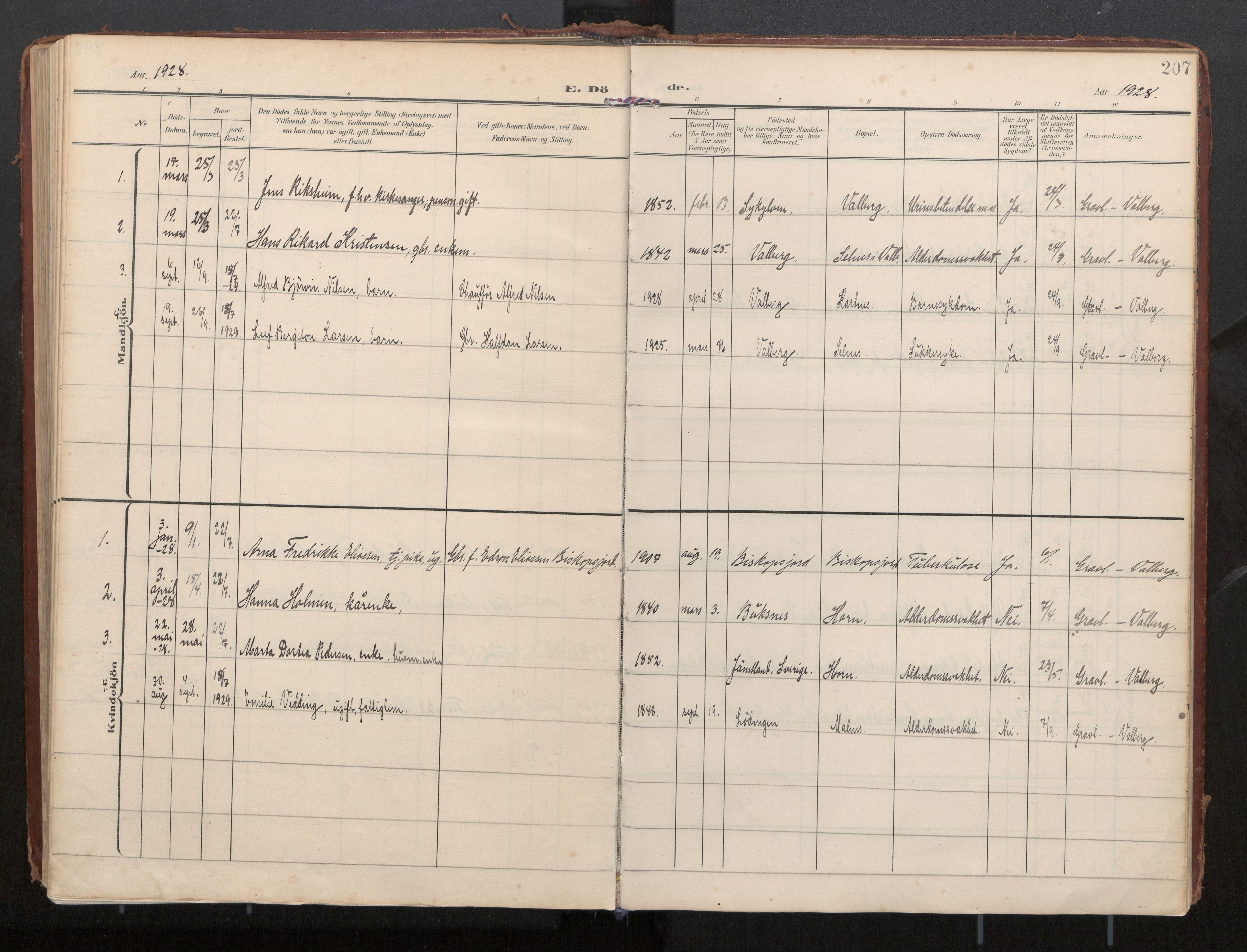 SAT, Ministerialprotokoller, klokkerbøker og fødselsregistre - Nordland, 884/L1194: Ministerialbok nr. 884A02, 1906-1937, s. 207
