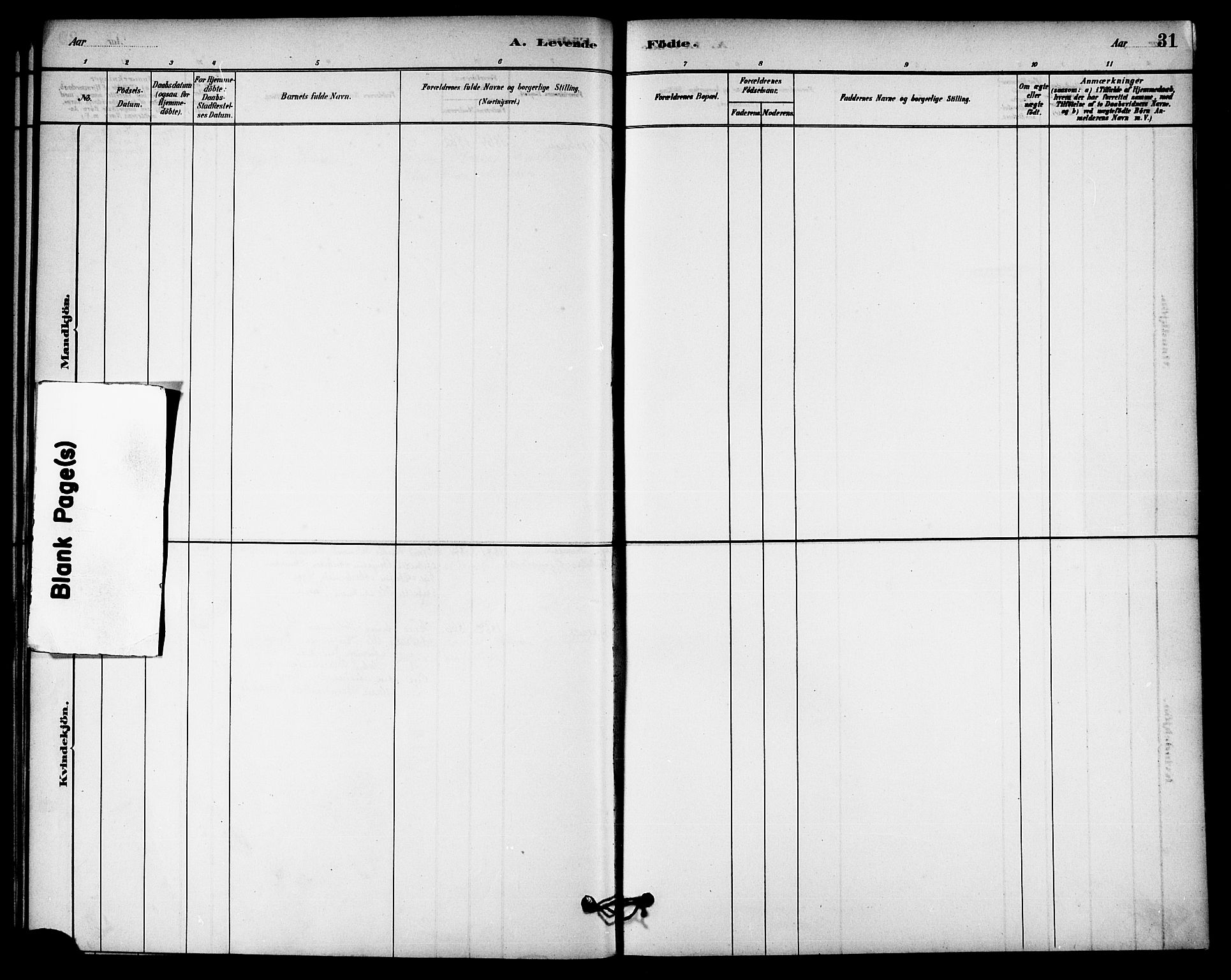 SAT, Ministerialprotokoller, klokkerbøker og fødselsregistre - Nord-Trøndelag, 740/L0378: Ministerialbok nr. 740A01, 1881-1895, s. 31
