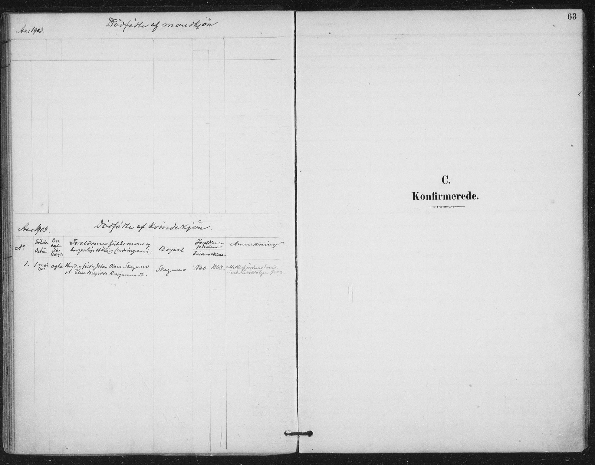 SAT, Ministerialprotokoller, klokkerbøker og fødselsregistre - Nord-Trøndelag, 780/L0644: Ministerialbok nr. 780A08, 1886-1903, s. 63
