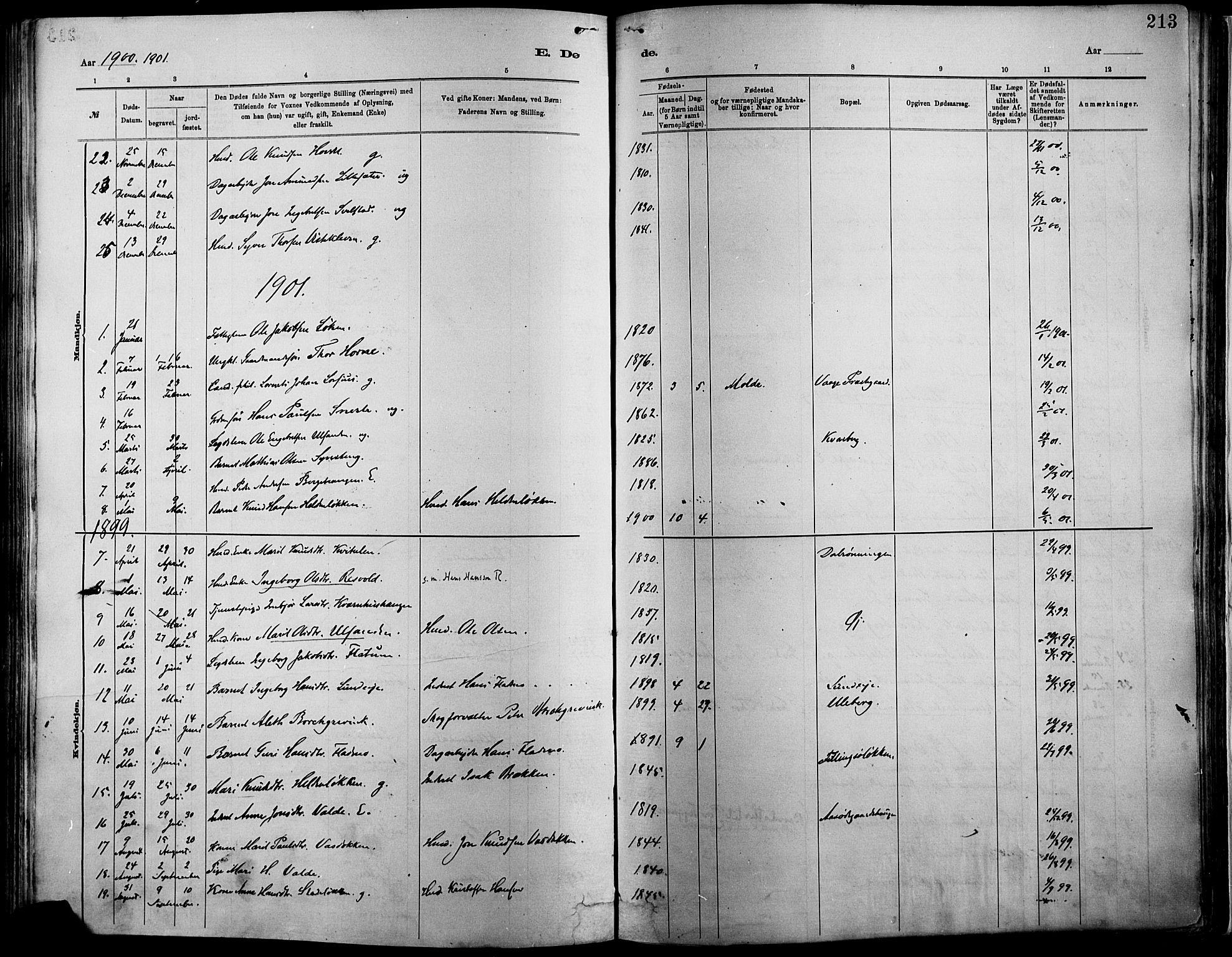 SAH, Vågå prestekontor, Ministerialbok nr. 9, 1886-1904, s. 213