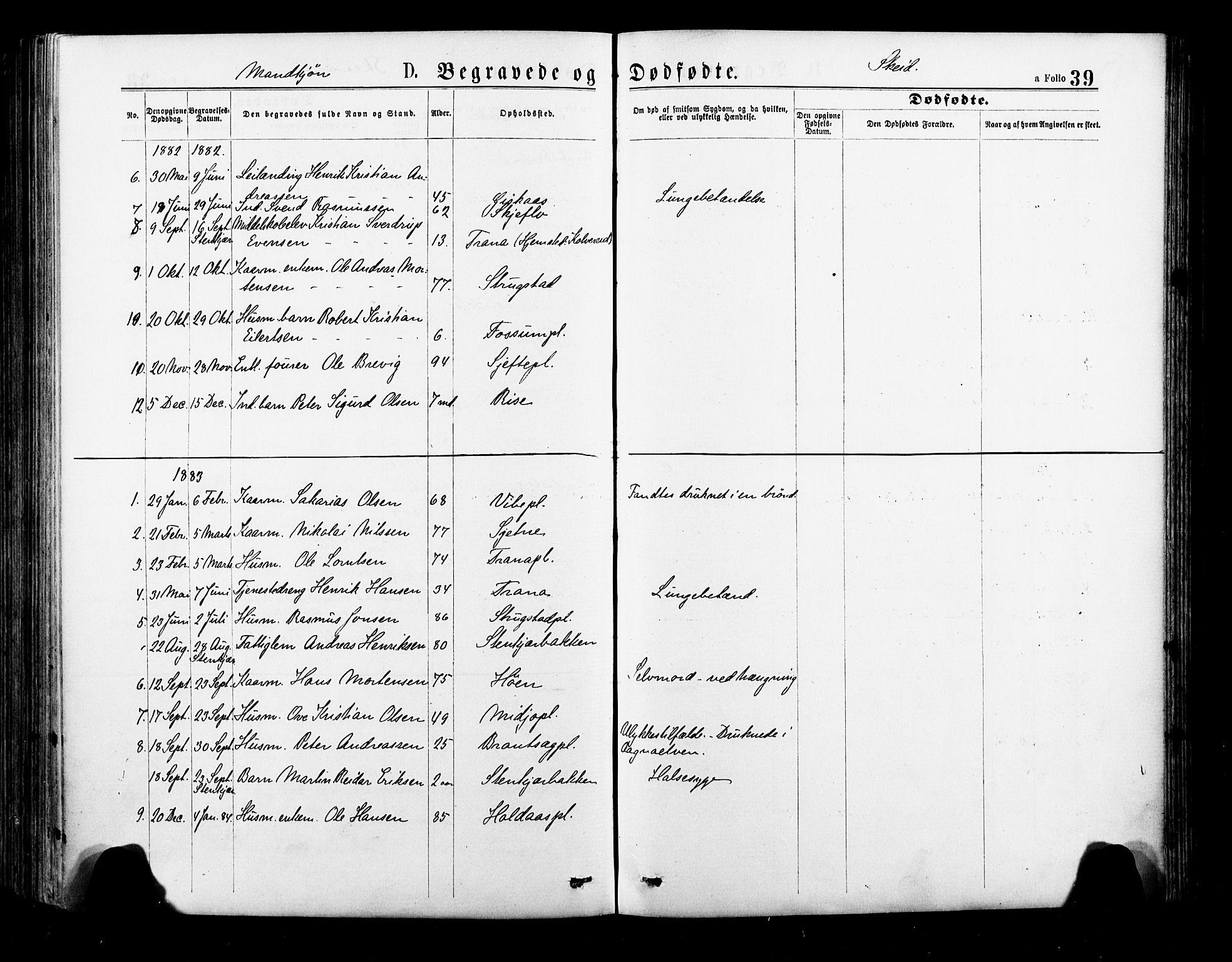SAT, Ministerialprotokoller, klokkerbøker og fødselsregistre - Nord-Trøndelag, 735/L0348: Ministerialbok nr. 735A09 /2, 1873-1883, s. 39