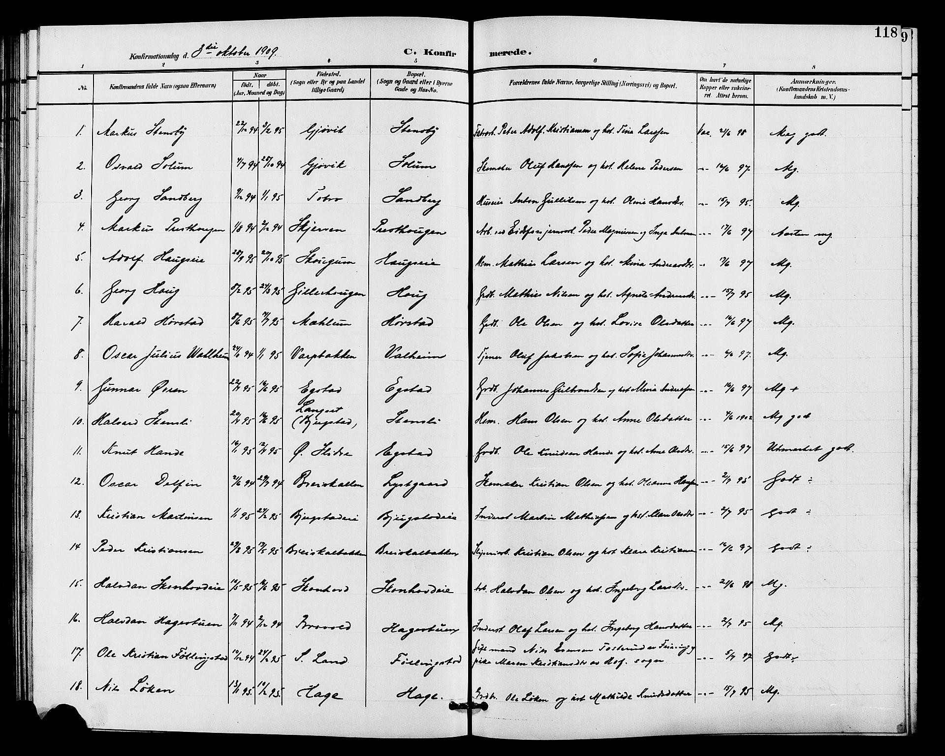 SAH, Vardal prestekontor, H/Ha/Hab/L0011: Klokkerbok nr. 11, 1899-1913, s. 118