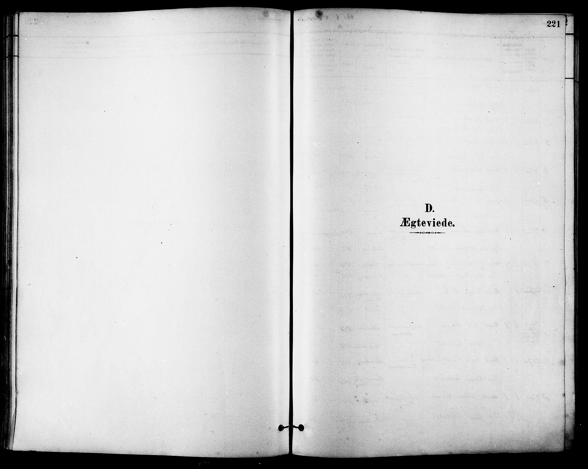 SAT, Ministerialprotokoller, klokkerbøker og fødselsregistre - Sør-Trøndelag, 630/L0496: Ministerialbok nr. 630A09, 1879-1895, s. 221