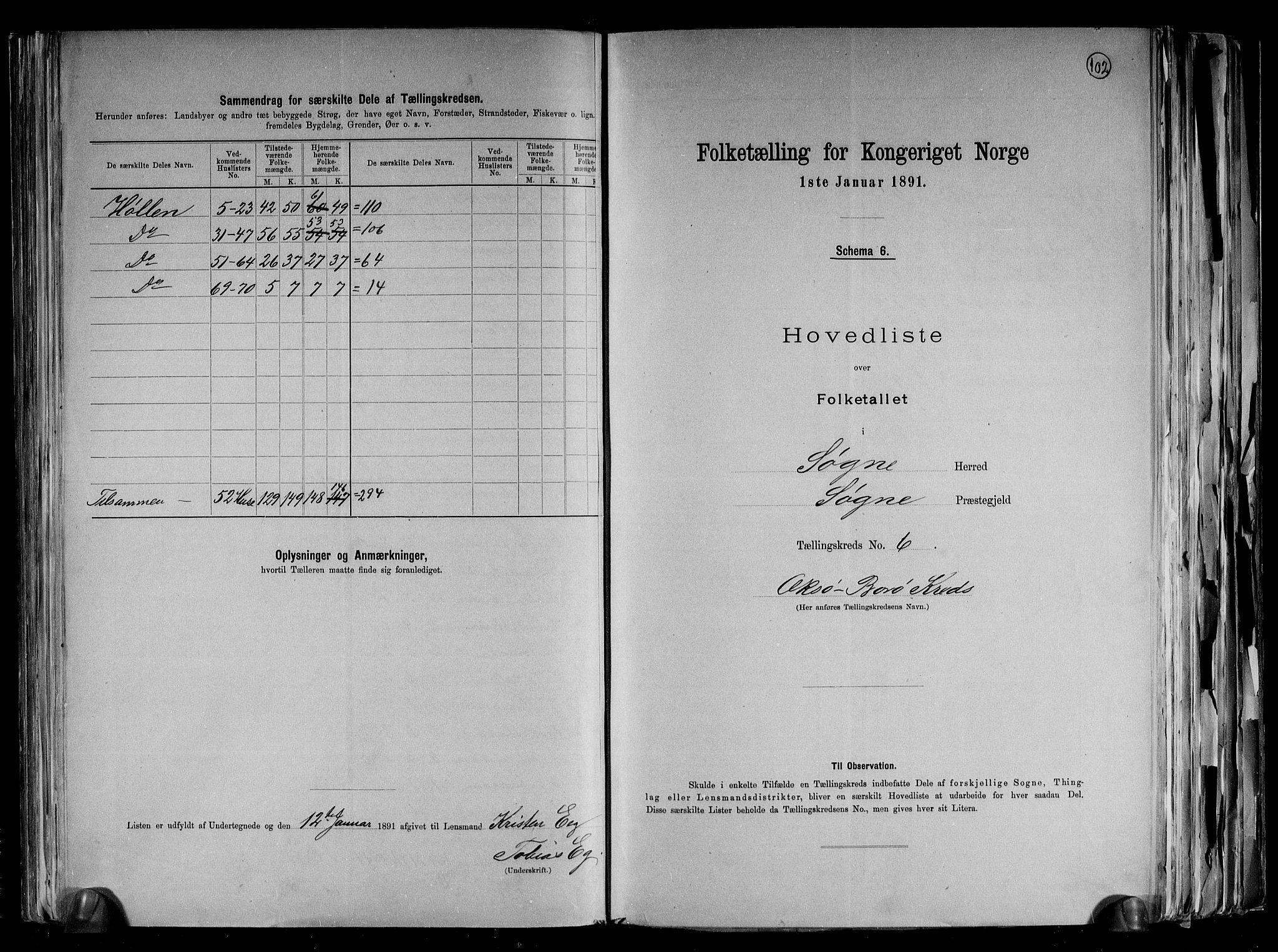 RA, Folketelling 1891 for 1018 Søgne herred, 1891, s. 17
