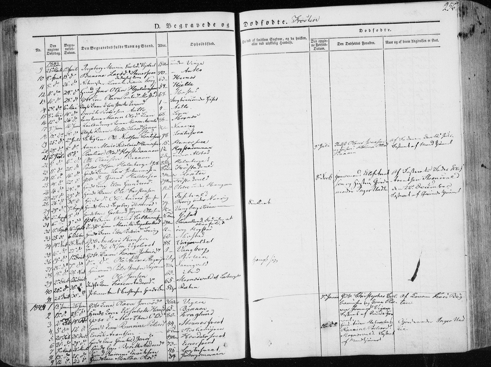 SAT, Ministerialprotokoller, klokkerbøker og fødselsregistre - Nord-Trøndelag, 713/L0115: Ministerialbok nr. 713A06, 1838-1851, s. 256