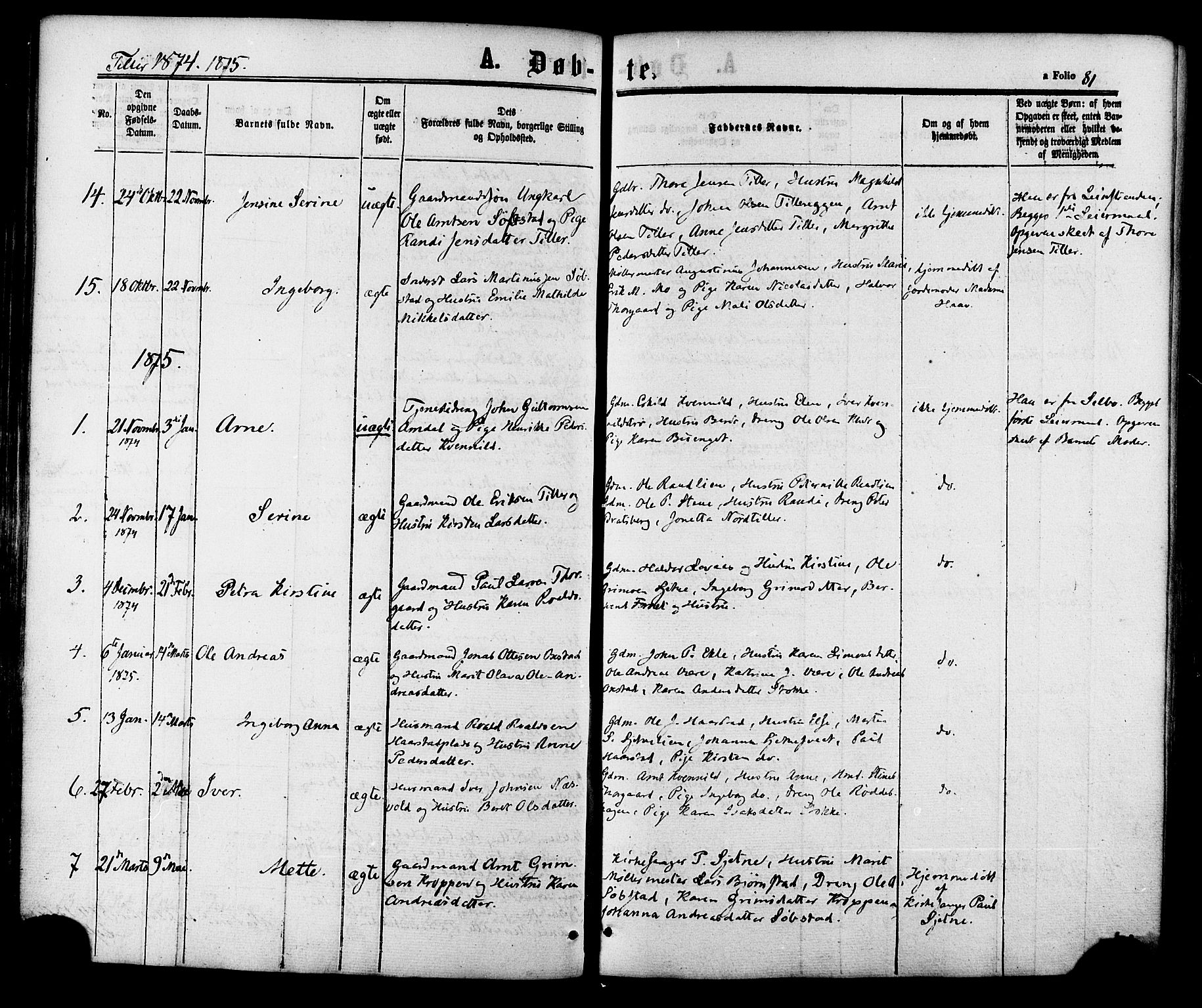 SAT, Ministerialprotokoller, klokkerbøker og fødselsregistre - Sør-Trøndelag, 618/L0443: Ministerialbok nr. 618A06 /2, 1863-1879, s. 81