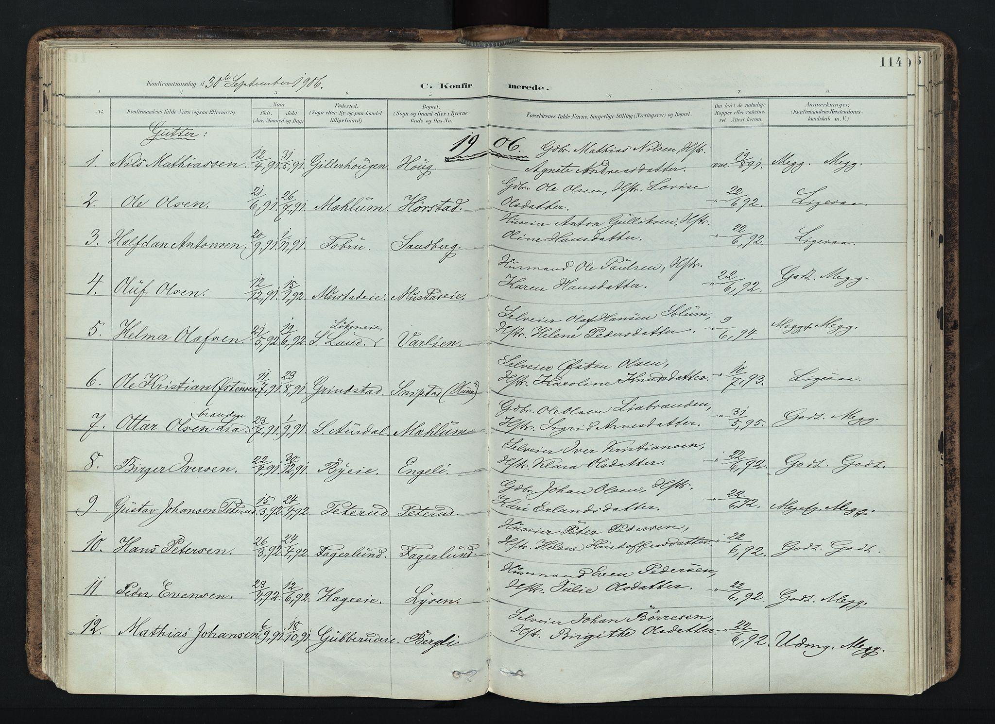 SAH, Vardal prestekontor, H/Ha/Haa/L0019: Ministerialbok nr. 19, 1893-1907, s. 114