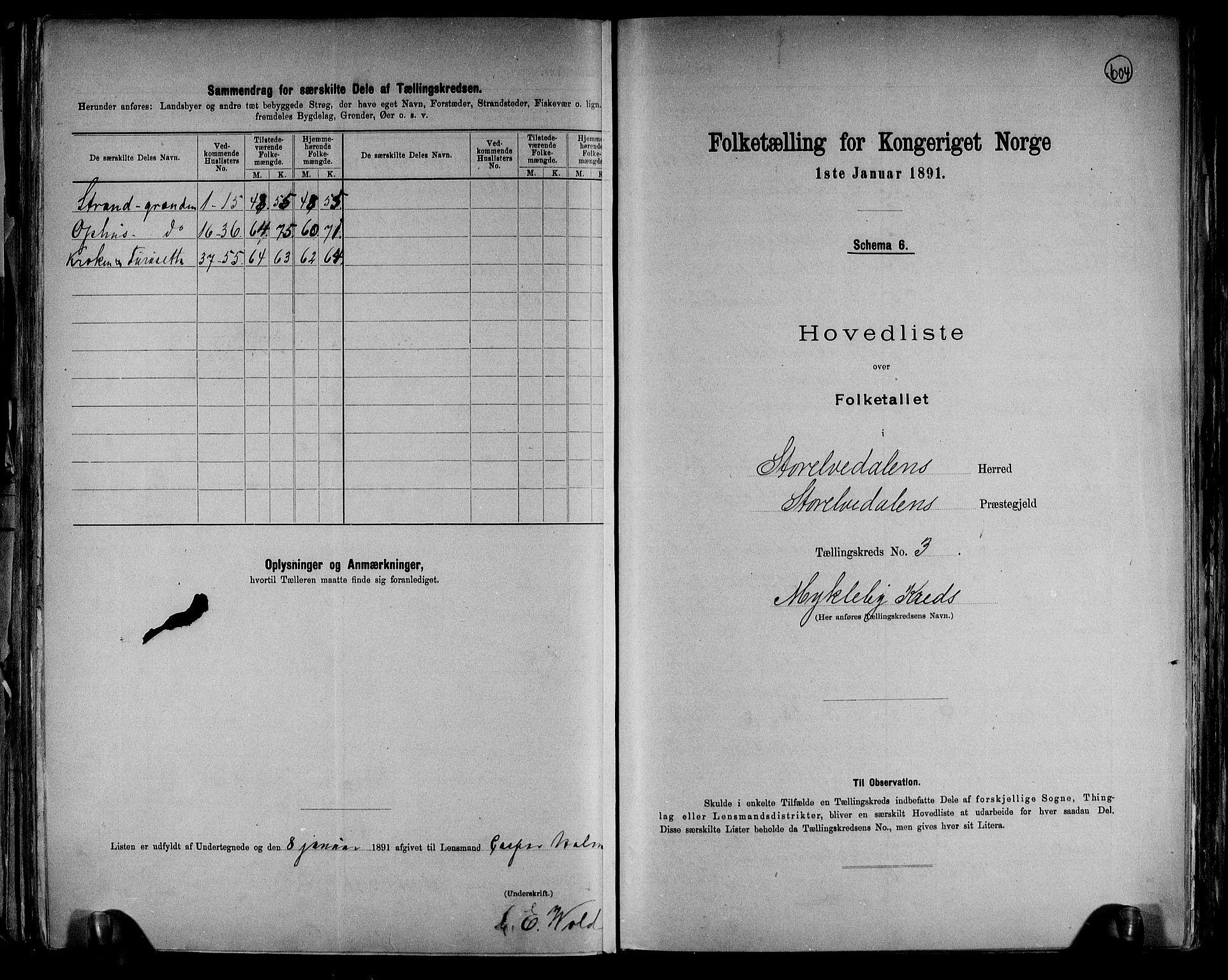 RA, Folketelling 1891 for 0430 Stor-Elvdal herred, 1891, s. 9