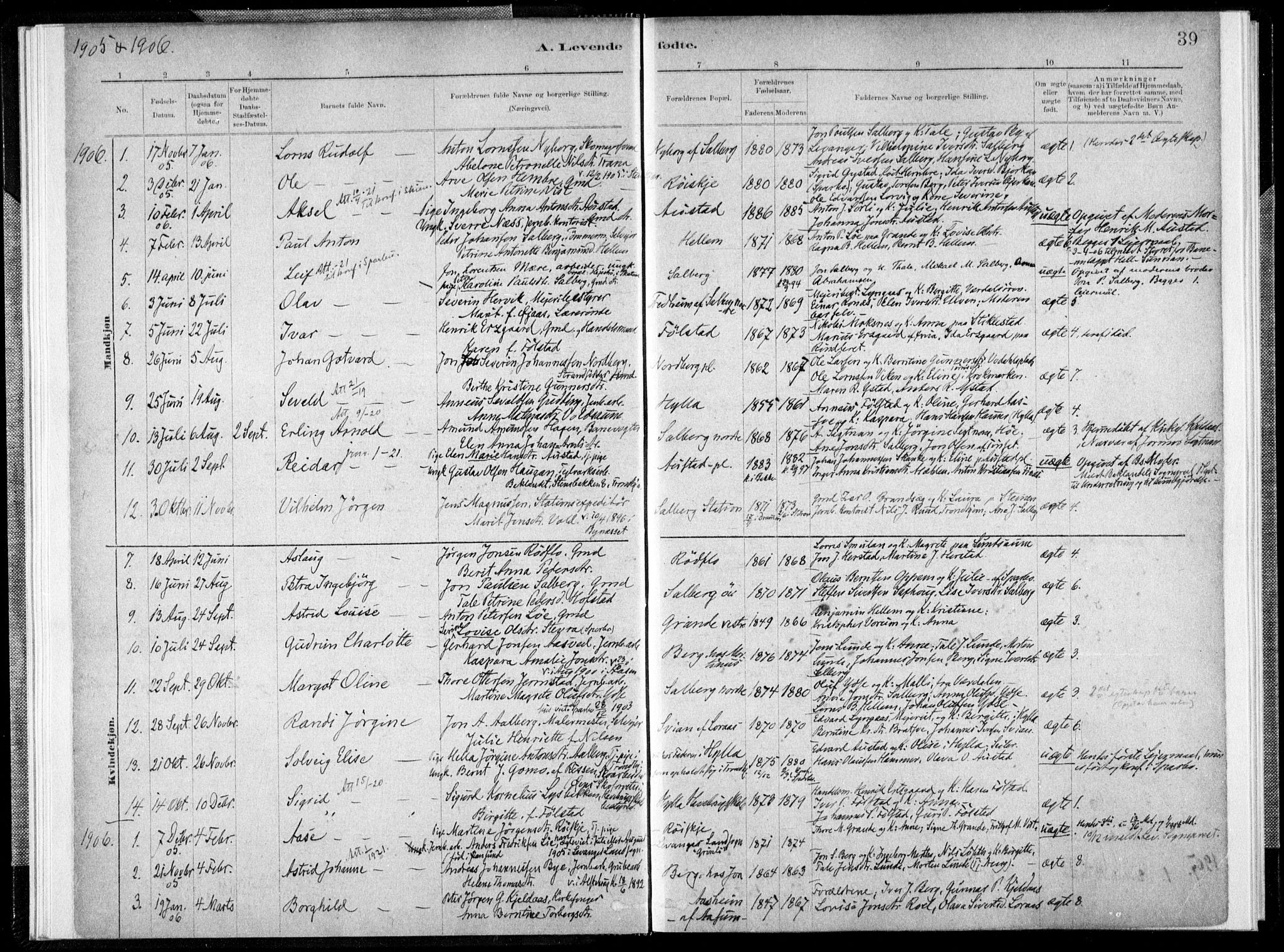 SAT, Ministerialprotokoller, klokkerbøker og fødselsregistre - Nord-Trøndelag, 731/L0309: Ministerialbok nr. 731A01, 1879-1918, s. 39