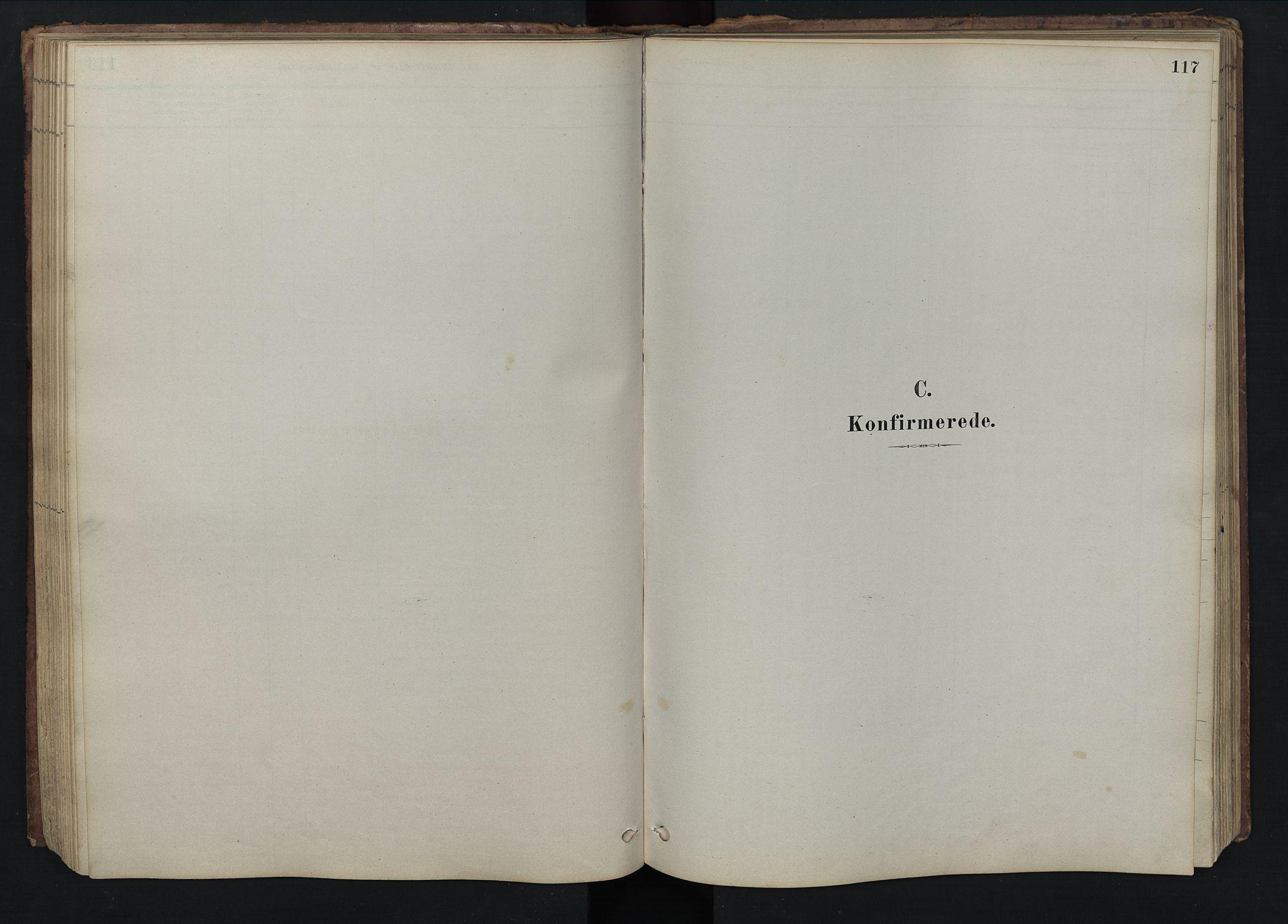 SAH, Rendalen prestekontor, H/Ha/Hab/L0009: Klokkerbok nr. 9, 1879-1902, s. 117