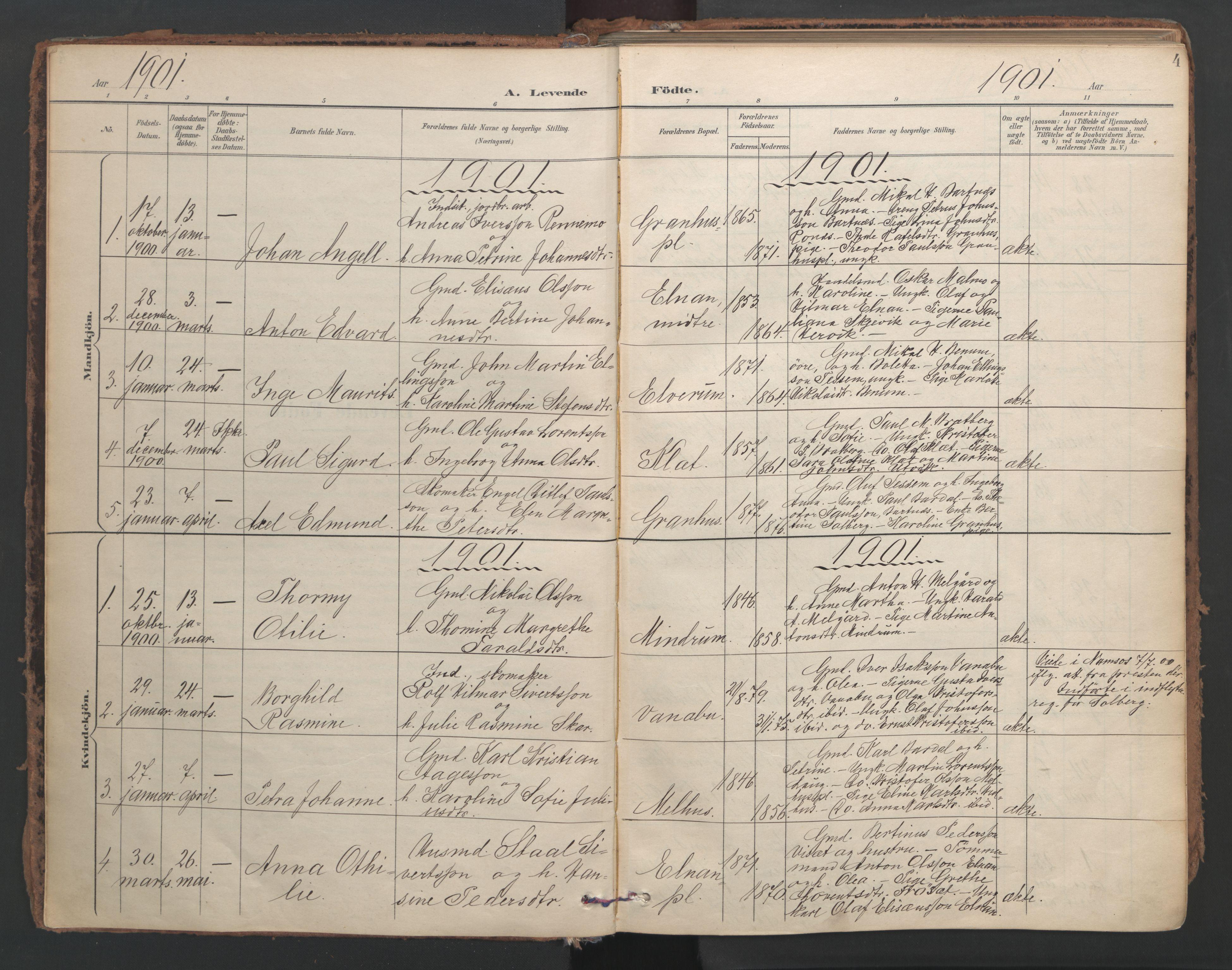 SAT, Ministerialprotokoller, klokkerbøker og fødselsregistre - Nord-Trøndelag, 741/L0397: Ministerialbok nr. 741A11, 1901-1911, s. 4