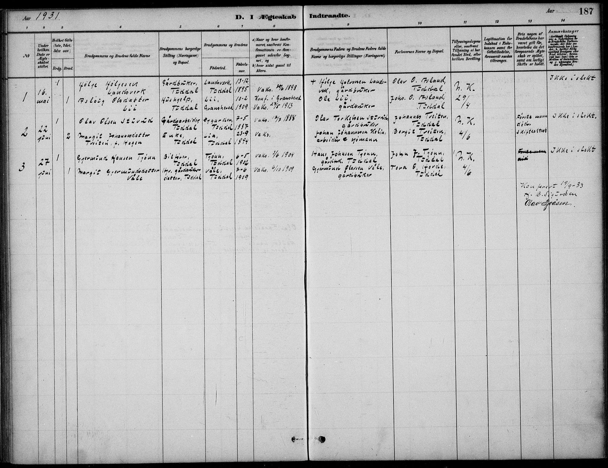 SAKO, Hjartdal kirkebøker, F/Fc/L0002: Ministerialbok nr. III 2, 1880-1936, s. 187