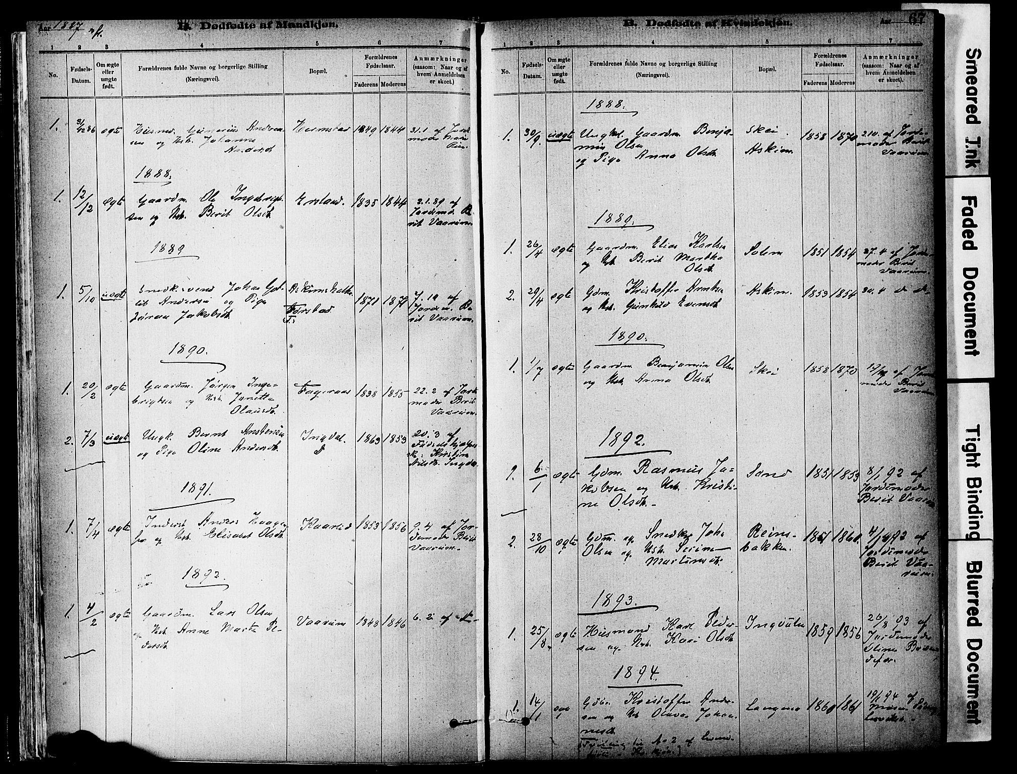 SAT, Ministerialprotokoller, klokkerbøker og fødselsregistre - Sør-Trøndelag, 646/L0615: Ministerialbok nr. 646A13, 1885-1900, s. 67