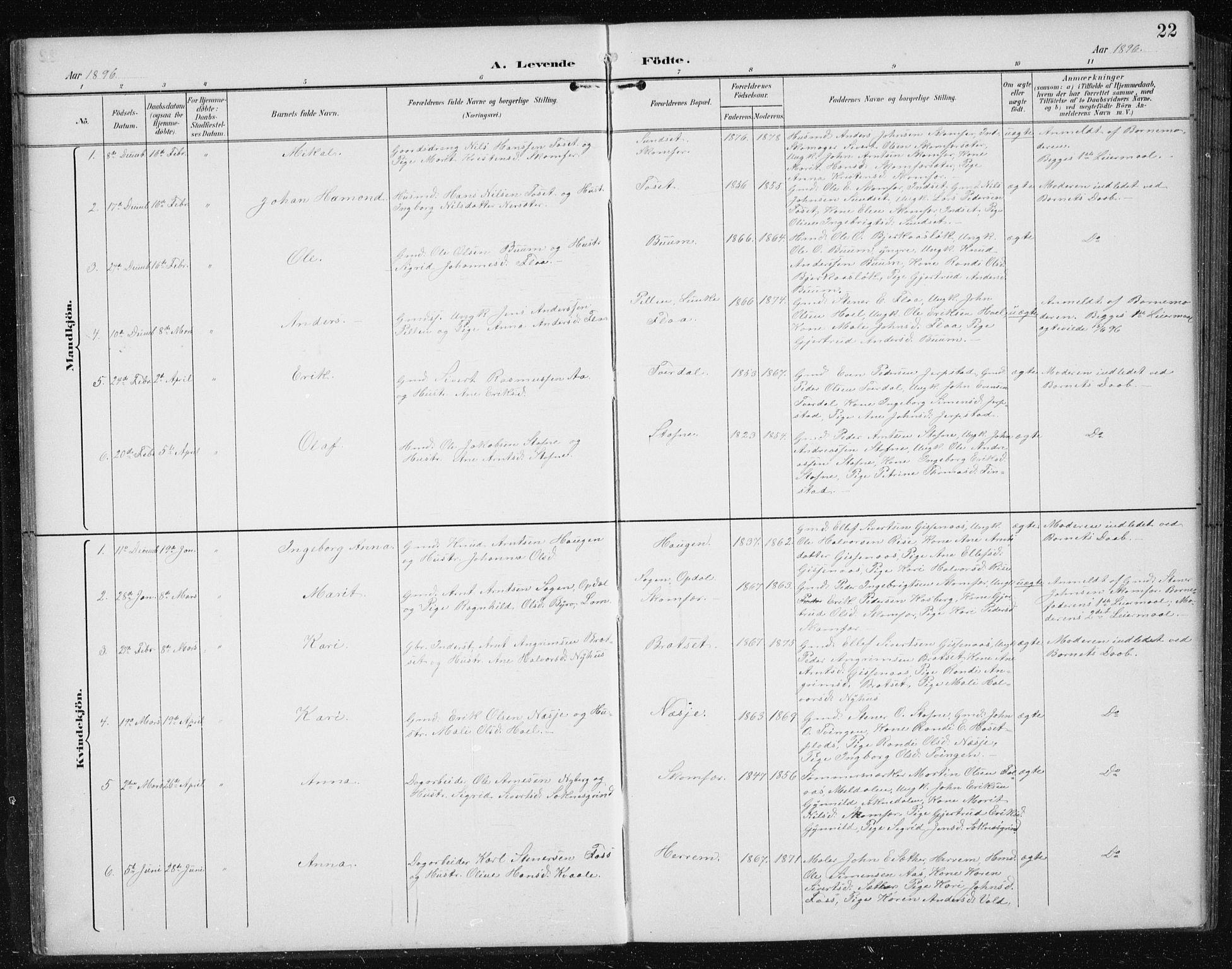SAT, Ministerialprotokoller, klokkerbøker og fødselsregistre - Sør-Trøndelag, 674/L0876: Klokkerbok nr. 674C03, 1892-1912, s. 22