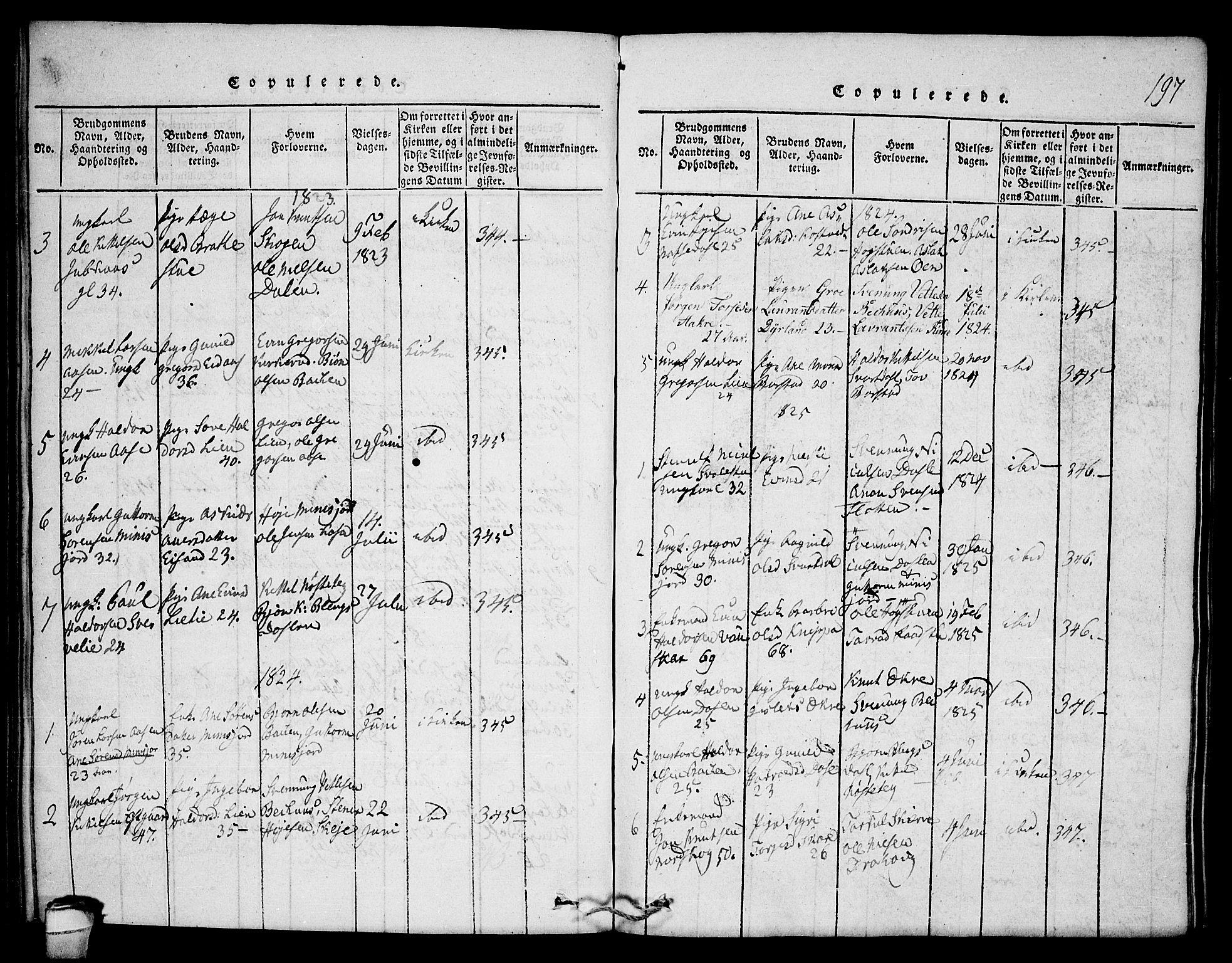 SAKO, Seljord kirkebøker, F/Fb/L0001: Ministerialbok nr. II 1, 1815-1831, s. 197