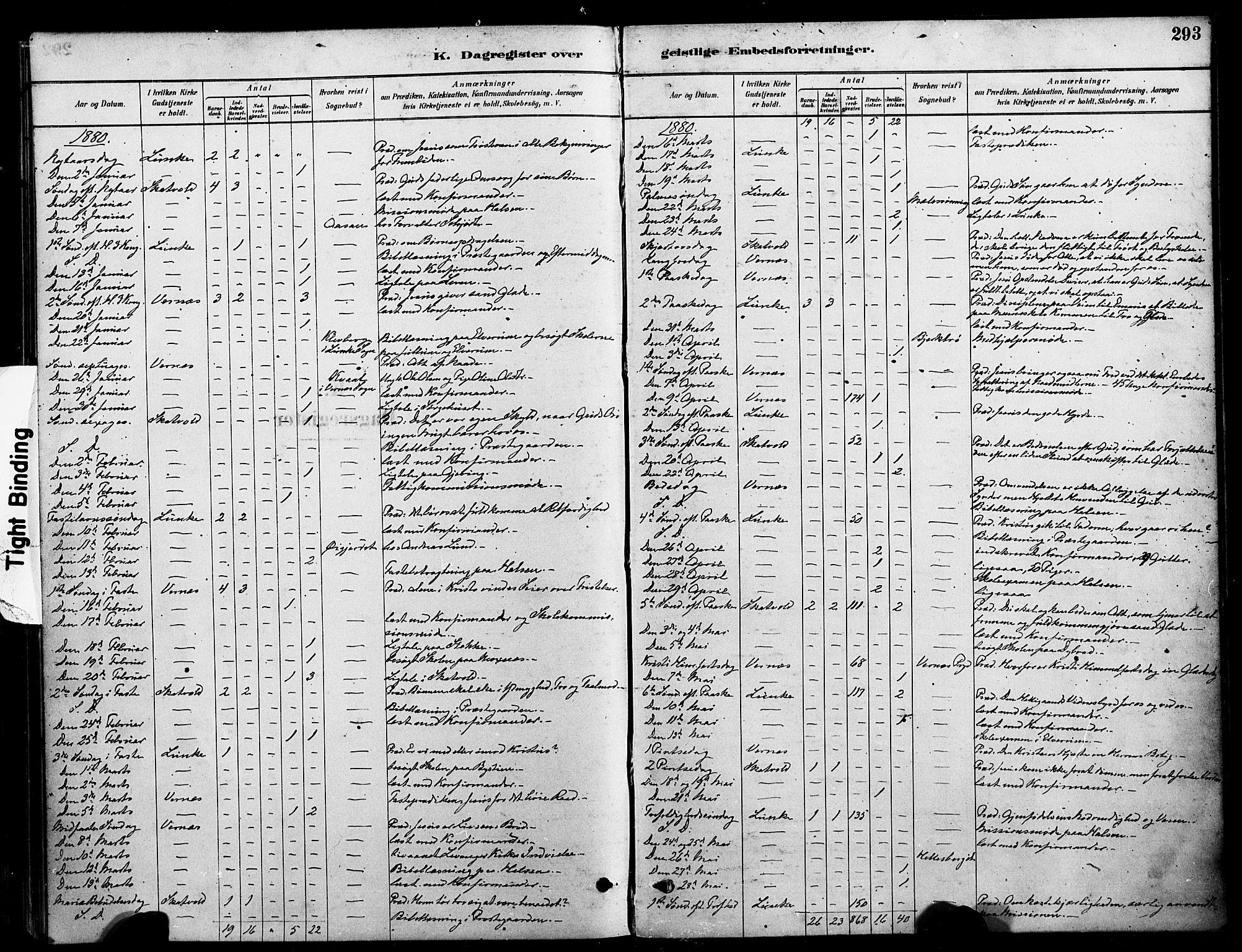 SAT, Ministerialprotokoller, klokkerbøker og fødselsregistre - Nord-Trøndelag, 709/L0077: Ministerialbok nr. 709A17, 1880-1895, s. 293