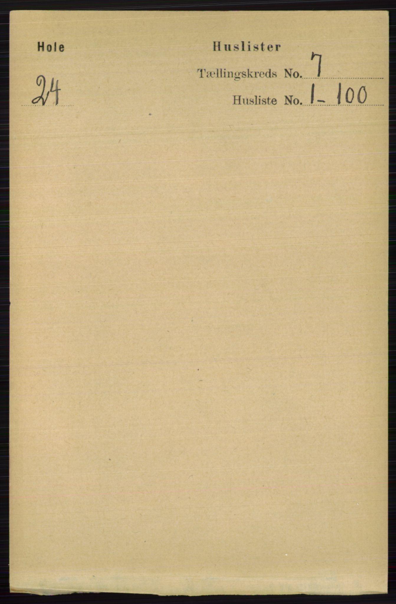 RA, Folketelling 1891 for 0612 Hole herred, 1891, s. 3881