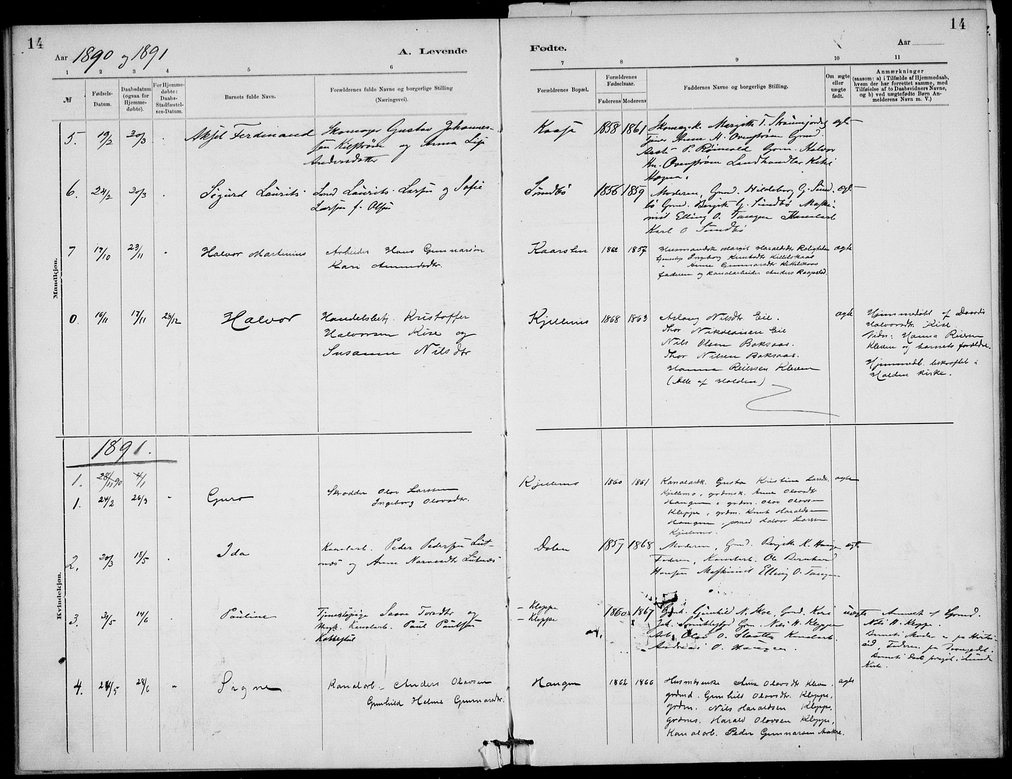SAKO, Lunde kirkebøker, F/Fb/L0003: Ministerialbok nr. II 3, 1882-1891, s. 14