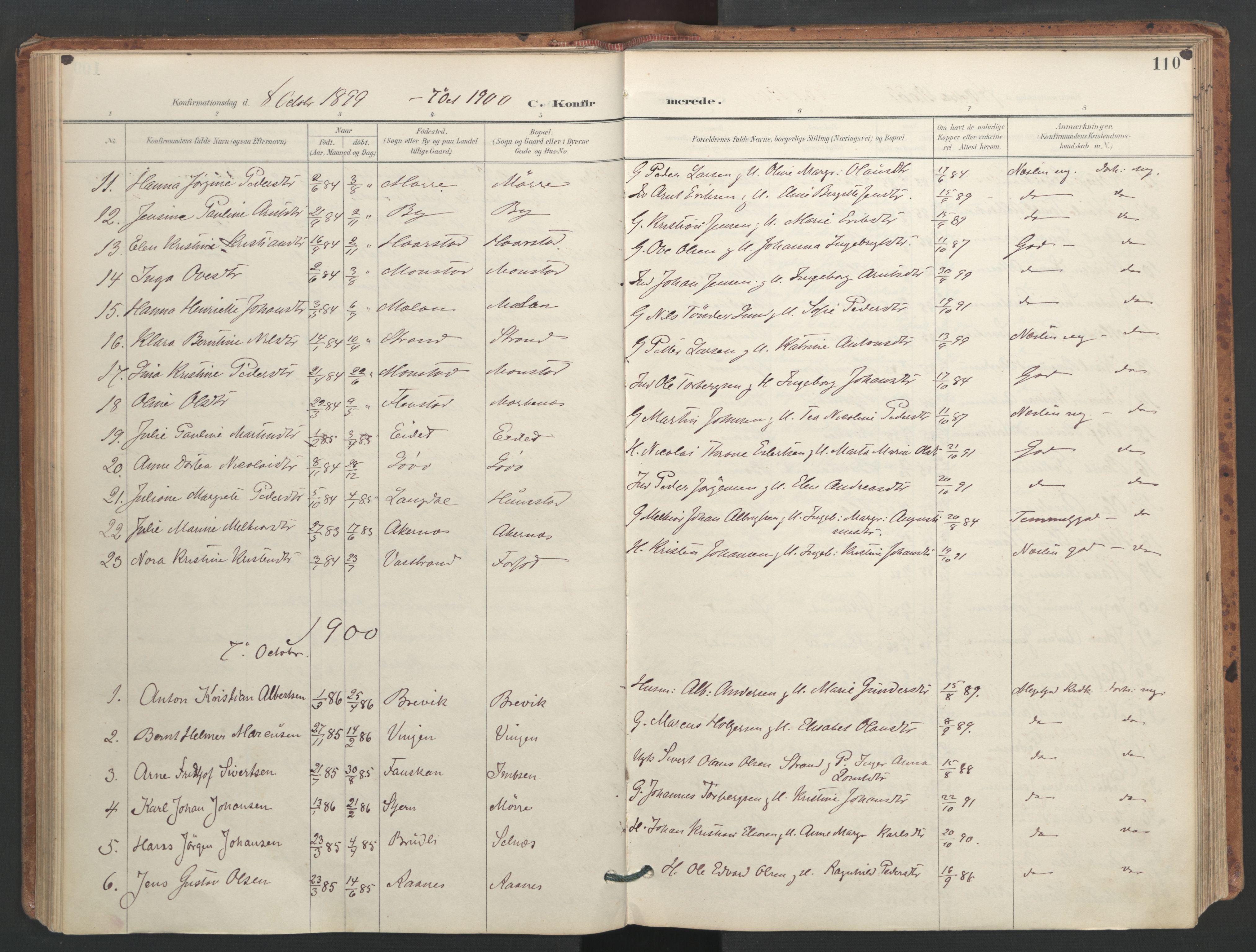 SAT, Ministerialprotokoller, klokkerbøker og fødselsregistre - Sør-Trøndelag, 655/L0681: Ministerialbok nr. 655A10, 1895-1907, s. 110