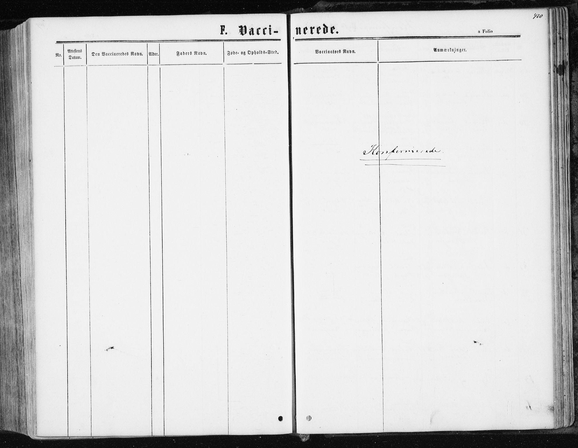 SAT, Ministerialprotokoller, klokkerbøker og fødselsregistre - Nord-Trøndelag, 741/L0394: Ministerialbok nr. 741A08, 1864-1877, s. 420