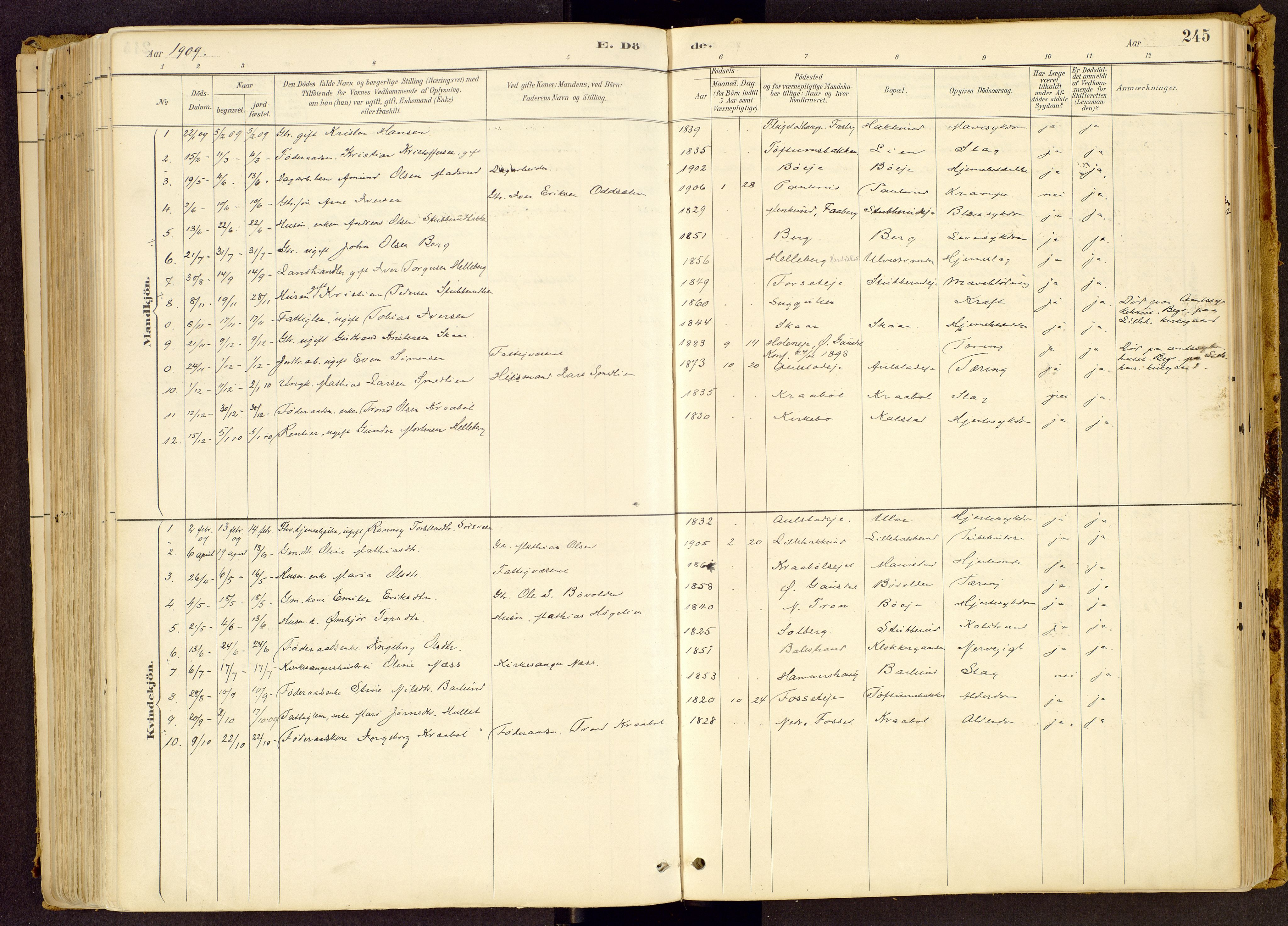 SAH, Vestre Gausdal prestekontor, Ministerialbok nr. 1, 1887-1914, s. 245