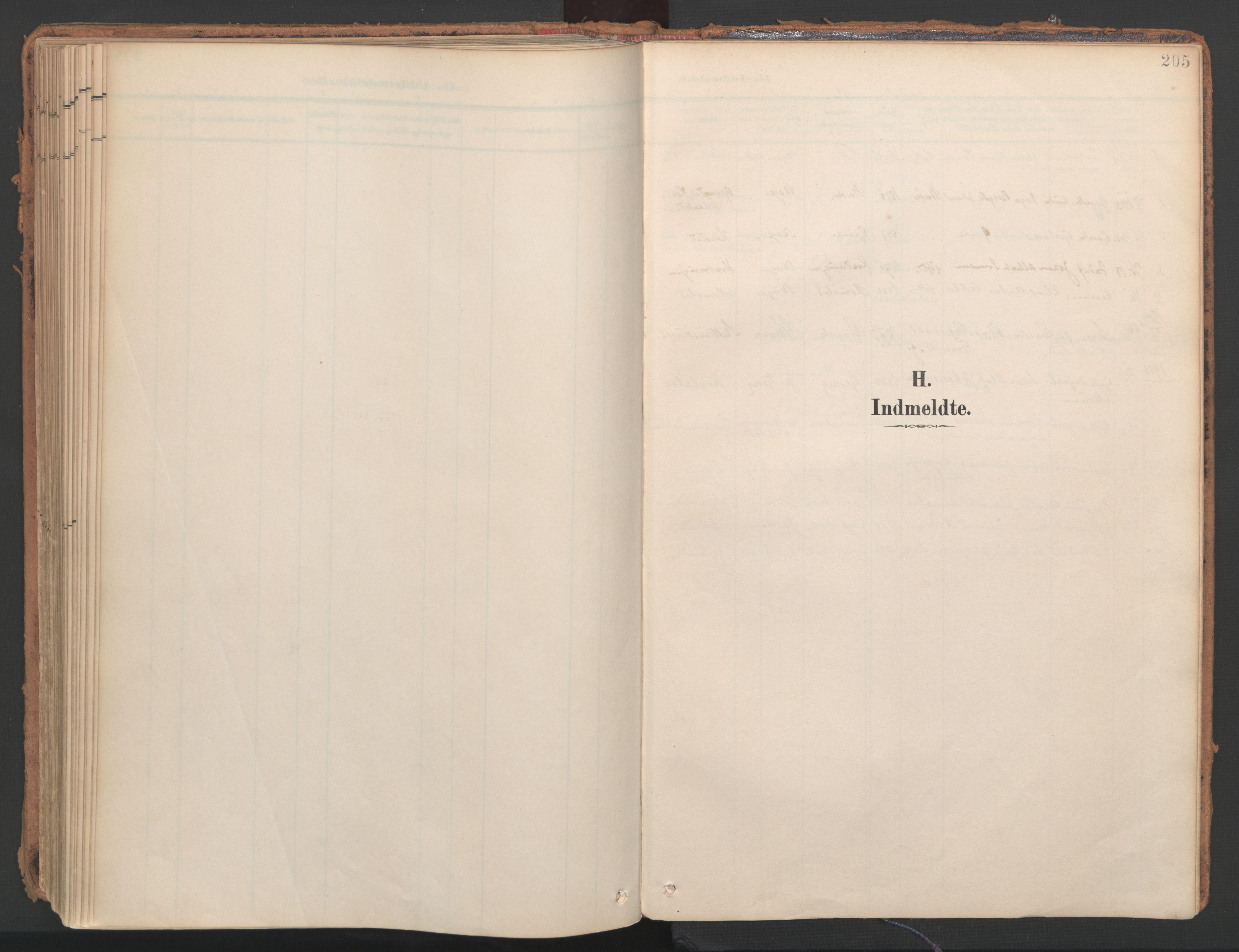 SAT, Ministerialprotokoller, klokkerbøker og fødselsregistre - Nord-Trøndelag, 766/L0564: Ministerialbok nr. 767A02, 1900-1932, s. 205