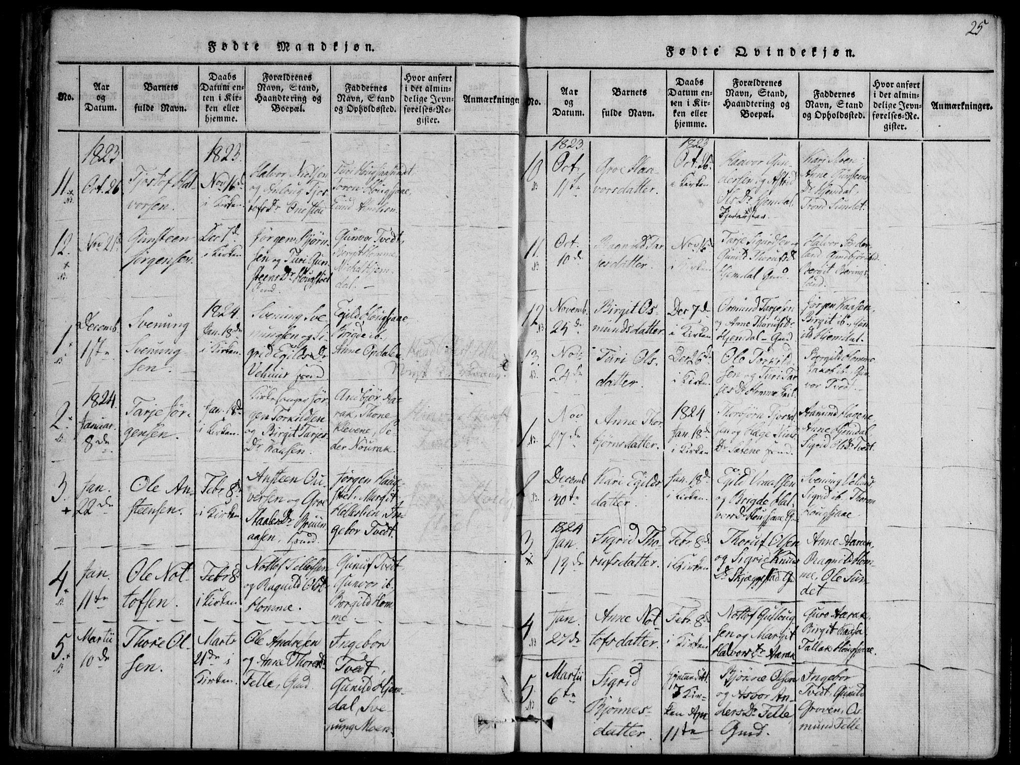 SAKO, Nissedal kirkebøker, F/Fb/L0001: Ministerialbok nr. II 1, 1814-1845, s. 25