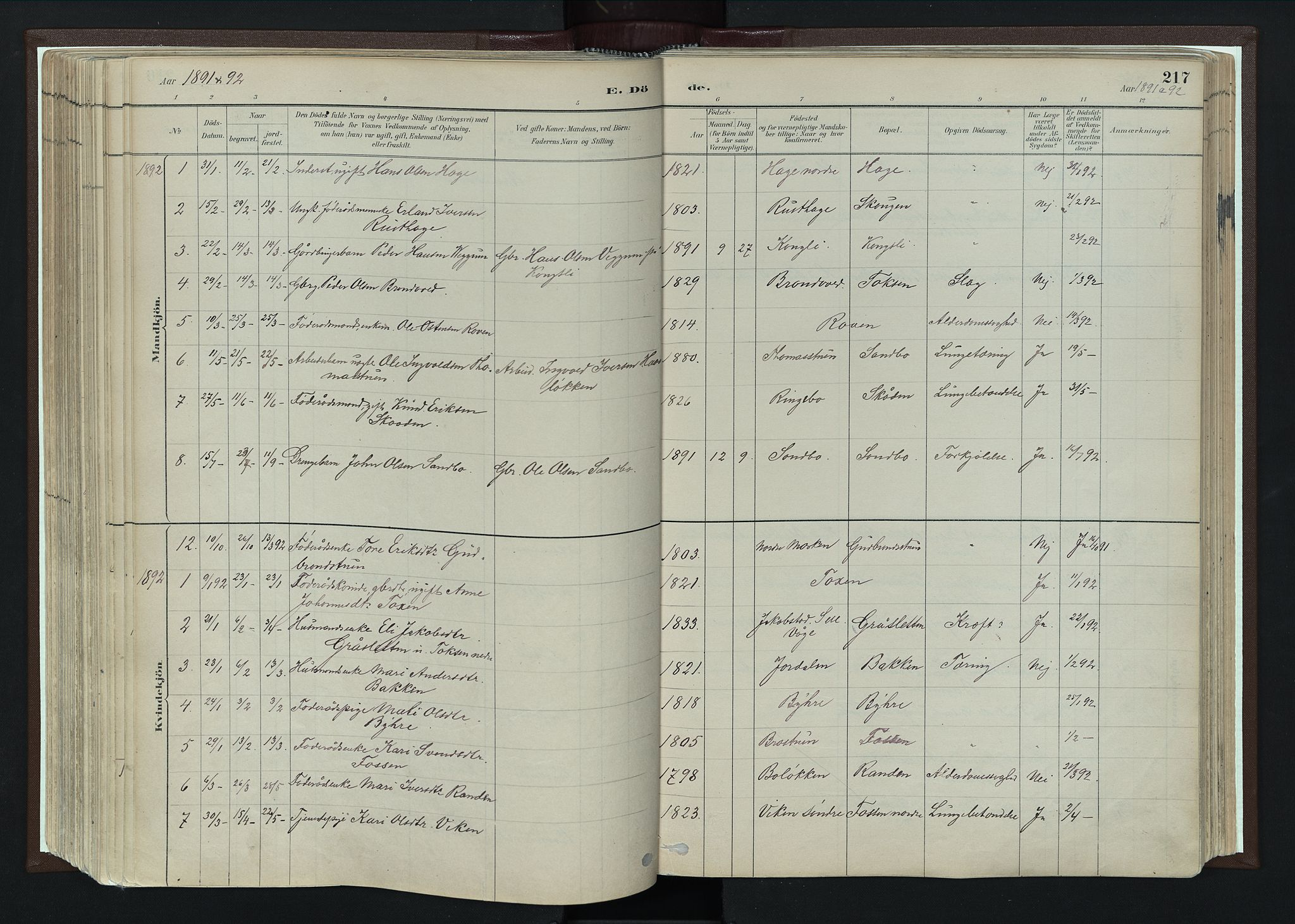 SAH, Nord-Fron prestekontor, Ministerialbok nr. 4, 1884-1914, s. 217