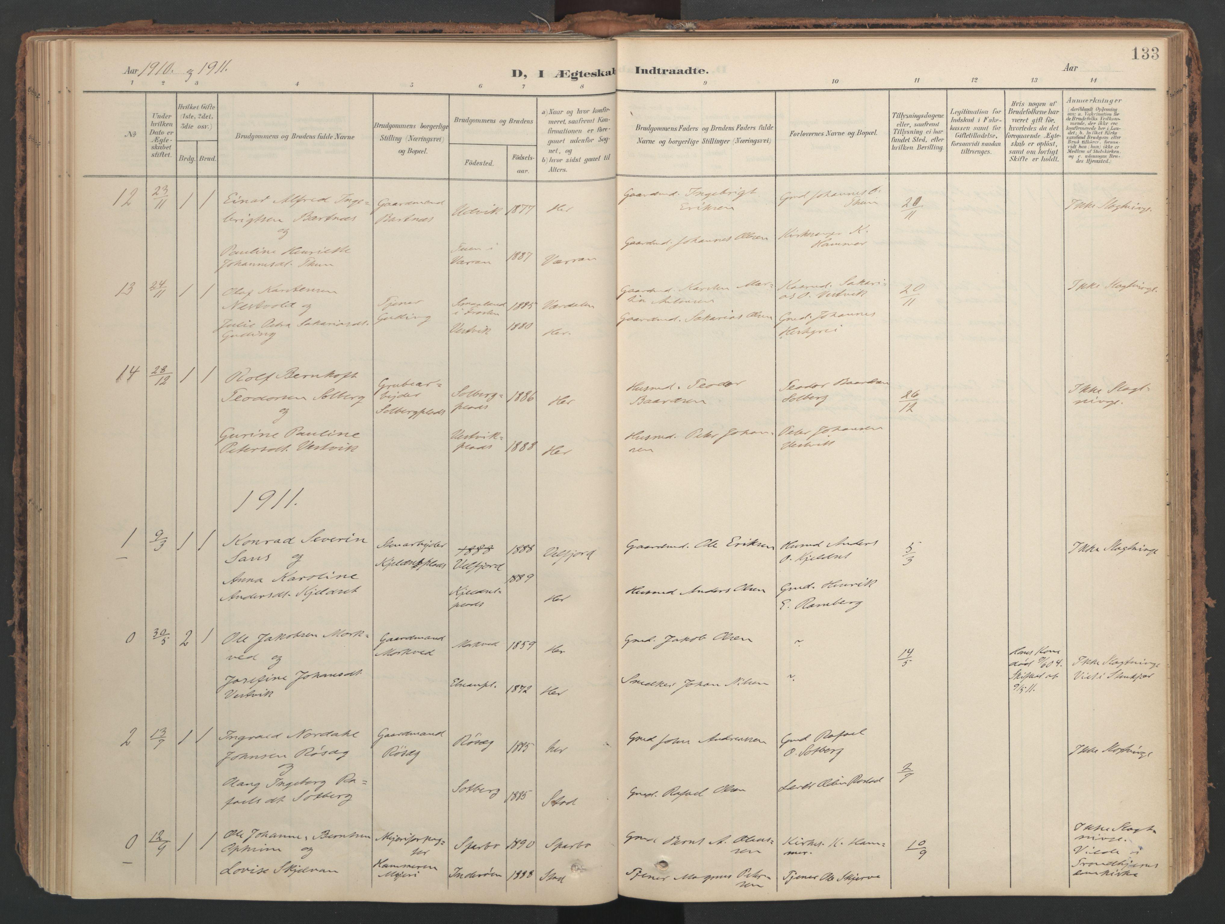 SAT, Ministerialprotokoller, klokkerbøker og fødselsregistre - Nord-Trøndelag, 741/L0397: Ministerialbok nr. 741A11, 1901-1911, s. 133