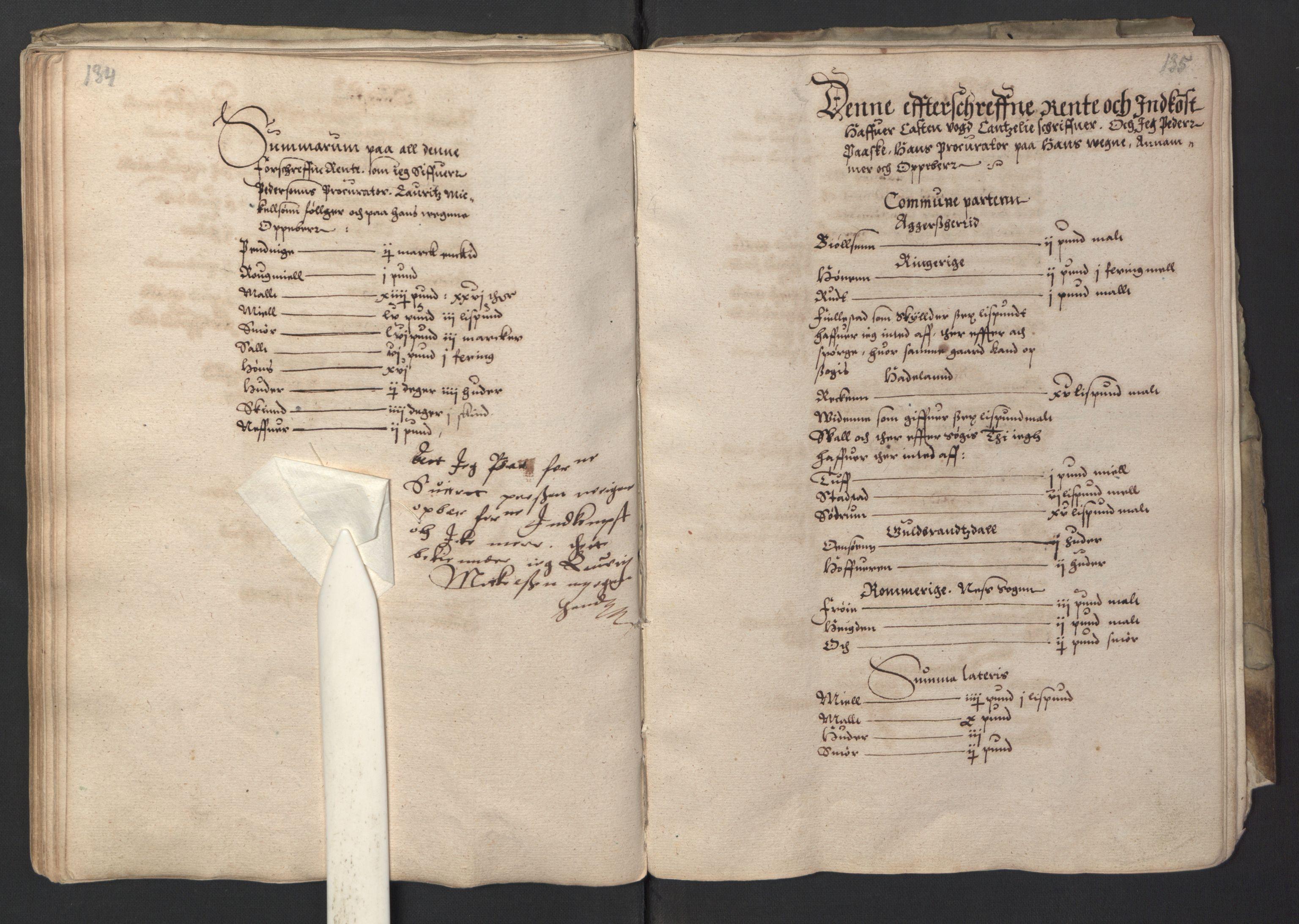 RA, Stattholderembetet 1572-1771, Ek/L0001: Jordebøker før 1624 og til utligning av garnisonsskatt 1624-1626:, 1595, s. 134-135