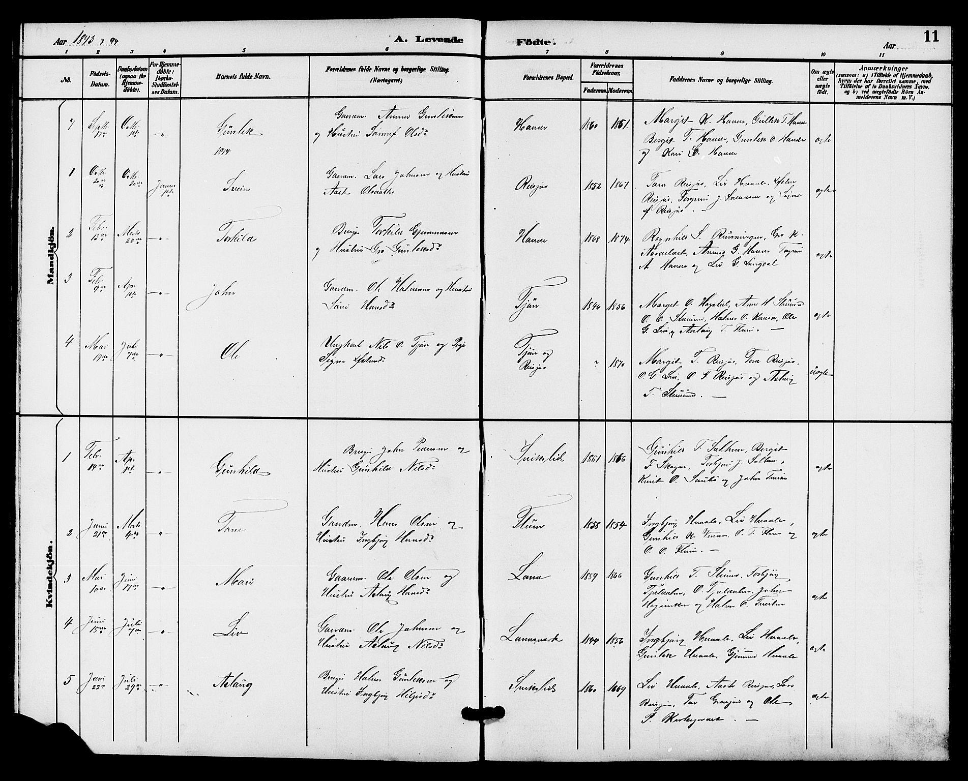 SAKO, Hjartdal kirkebøker, G/Gc/L0003: Klokkerbok nr. III 3, 1890-1907, s. 11