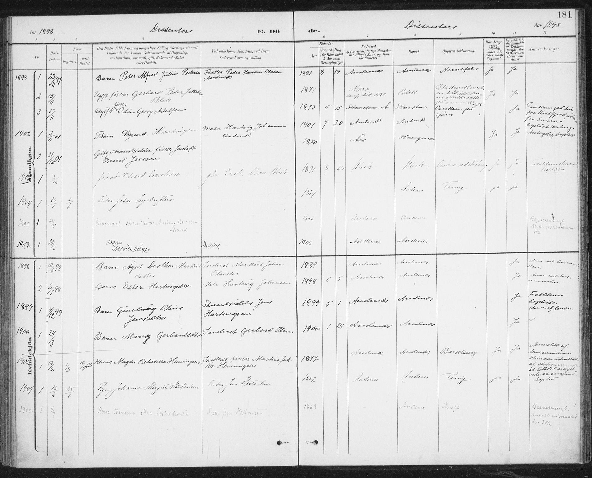 SAT, Ministerialprotokoller, klokkerbøker og fødselsregistre - Nordland, 899/L1437: Ministerialbok nr. 899A05, 1897-1908, s. 181