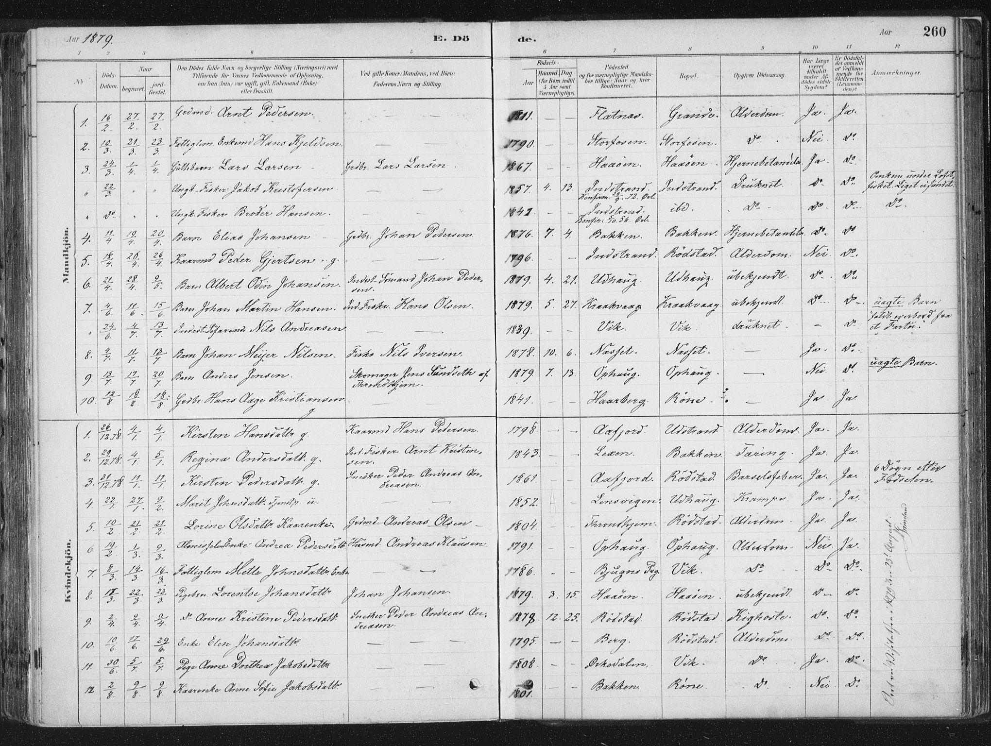 SAT, Ministerialprotokoller, klokkerbøker og fødselsregistre - Sør-Trøndelag, 659/L0739: Ministerialbok nr. 659A09, 1879-1893, s. 260