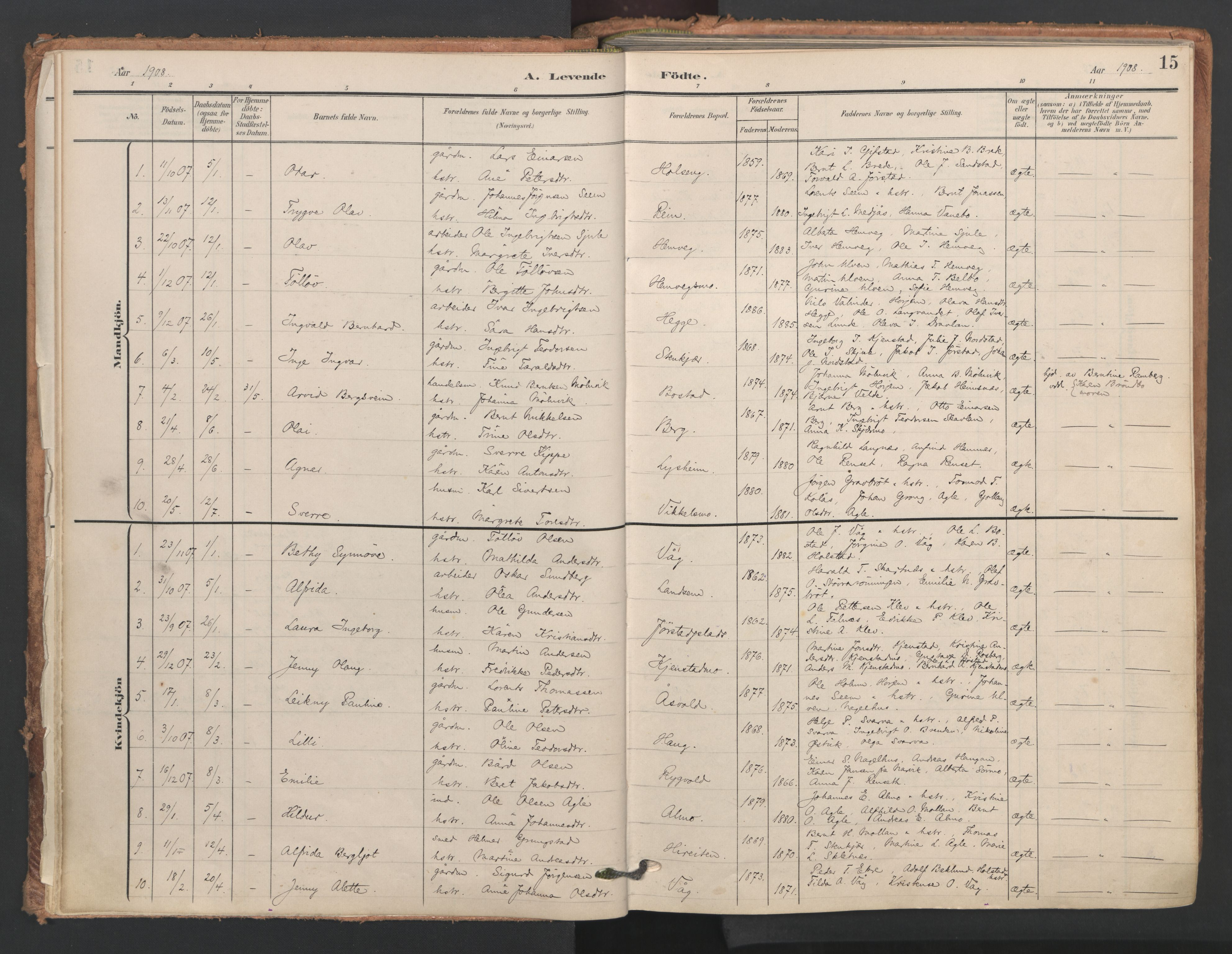 SAT, Ministerialprotokoller, klokkerbøker og fødselsregistre - Nord-Trøndelag, 749/L0477: Ministerialbok nr. 749A11, 1902-1927, s. 15
