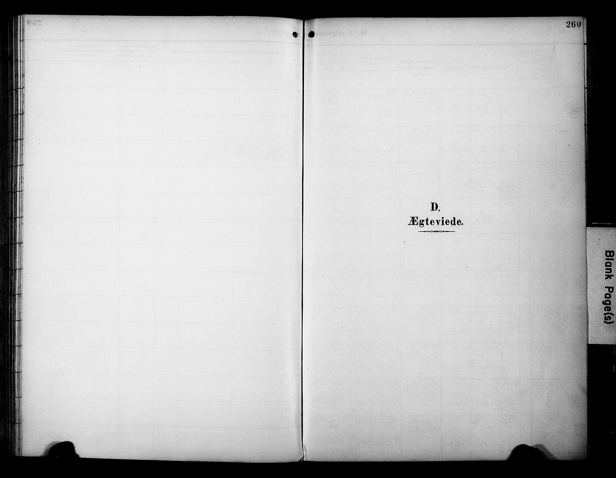 SAT, Ministerialprotokoller, klokkerbøker og fødselsregistre - Sør-Trøndelag, 695/L1149: Ministerialbok nr. 695A09, 1891-1902, s. 260