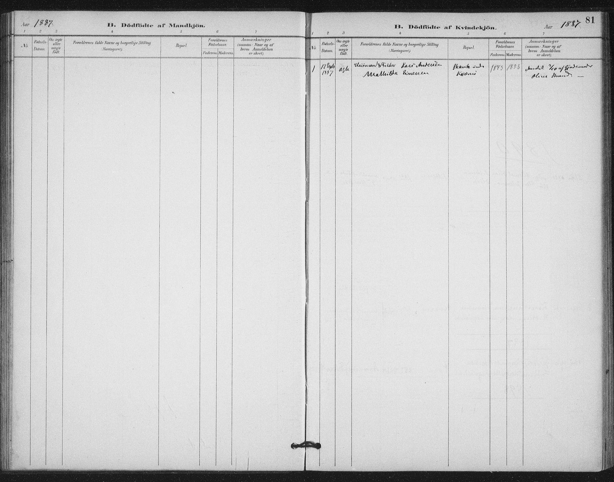 SAT, Ministerialprotokoller, klokkerbøker og fødselsregistre - Nord-Trøndelag, 772/L0603: Ministerialbok nr. 772A01, 1885-1912, s. 81