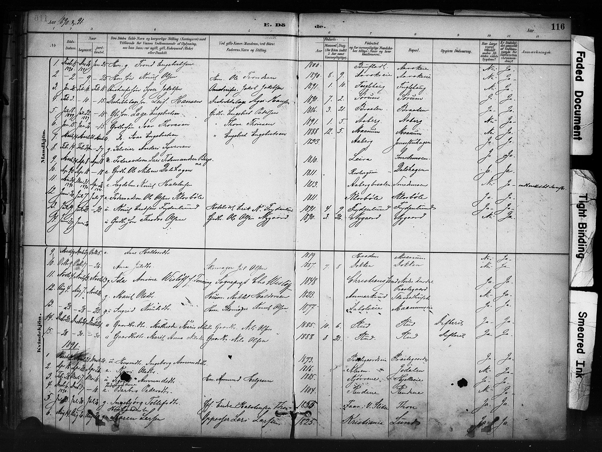 SAH, Nord-Aurdal prestekontor, Ministerialbok nr. 13, 1883-1895, s. 116