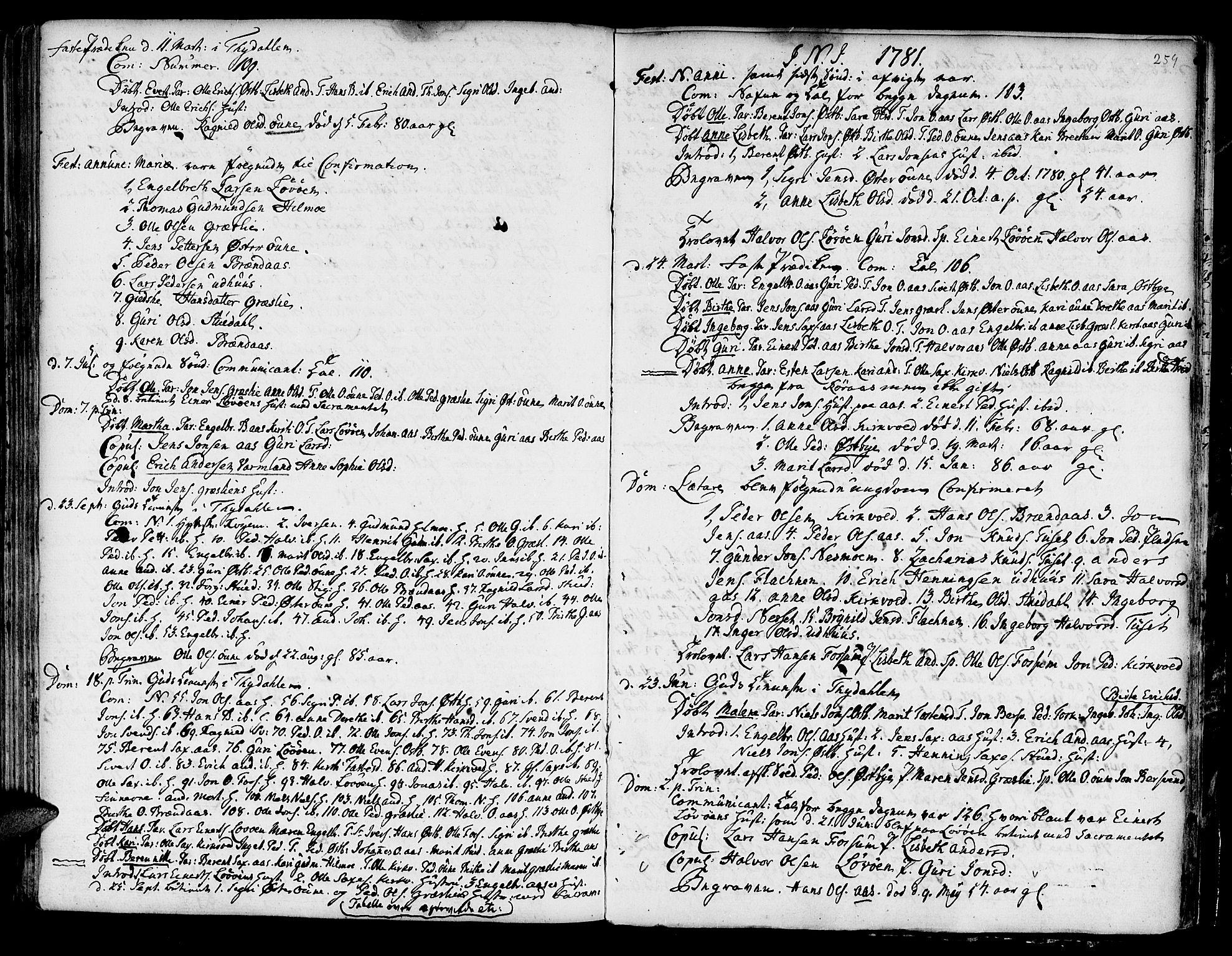 SAT, Ministerialprotokoller, klokkerbøker og fødselsregistre - Sør-Trøndelag, 695/L1139: Ministerialbok nr. 695A02 /2, 1776-1790, s. 259