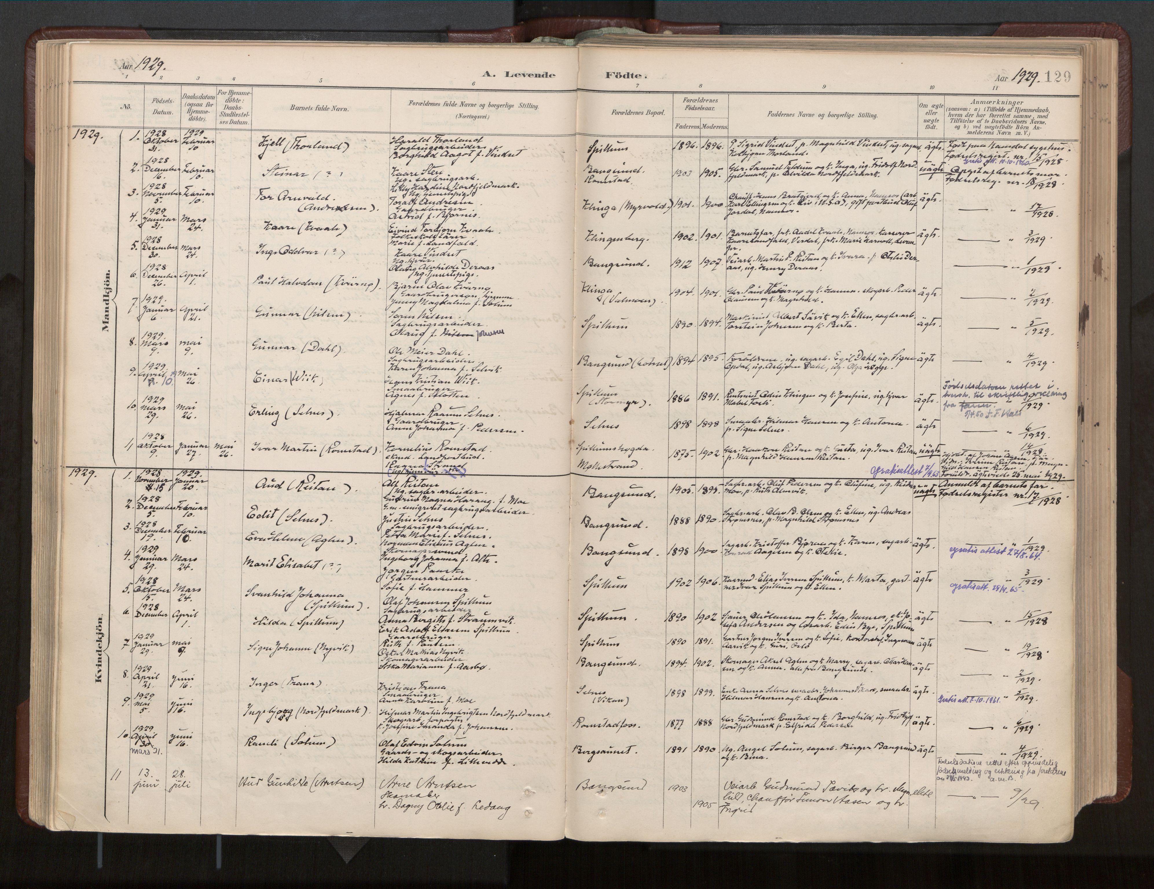 SAT, Ministerialprotokoller, klokkerbøker og fødselsregistre - Nord-Trøndelag, 770/L0589: Ministerialbok nr. 770A03, 1887-1929, s. 129