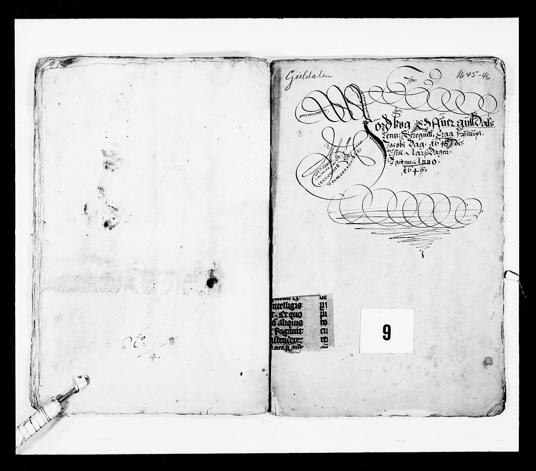 RA, Stattholderembetet 1572-1771, Ek/L0028: Jordebøker 1633-1658:, 1645-1646, s. 207