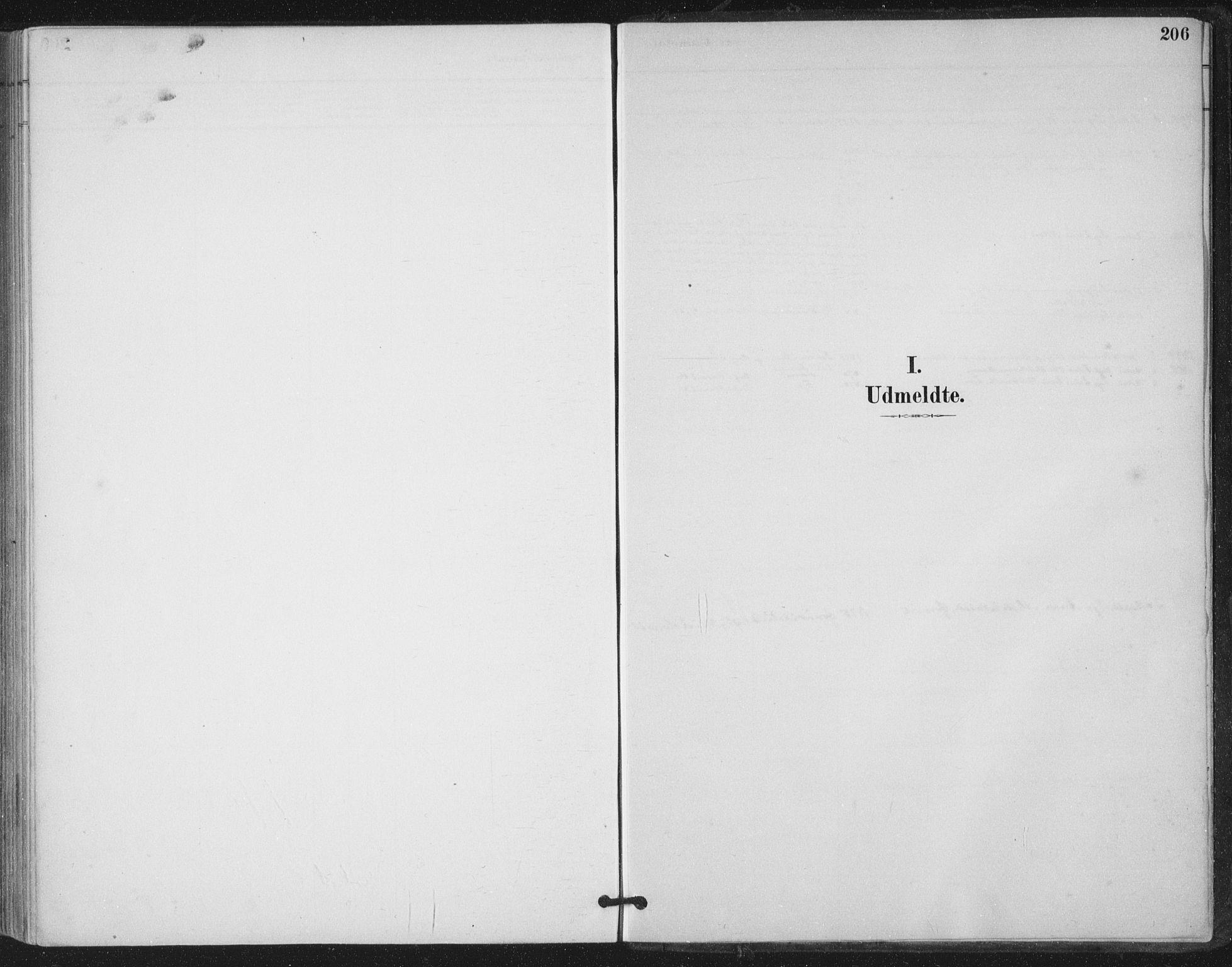 SAT, Ministerialprotokoller, klokkerbøker og fødselsregistre - Nord-Trøndelag, 780/L0644: Ministerialbok nr. 780A08, 1886-1903, s. 206