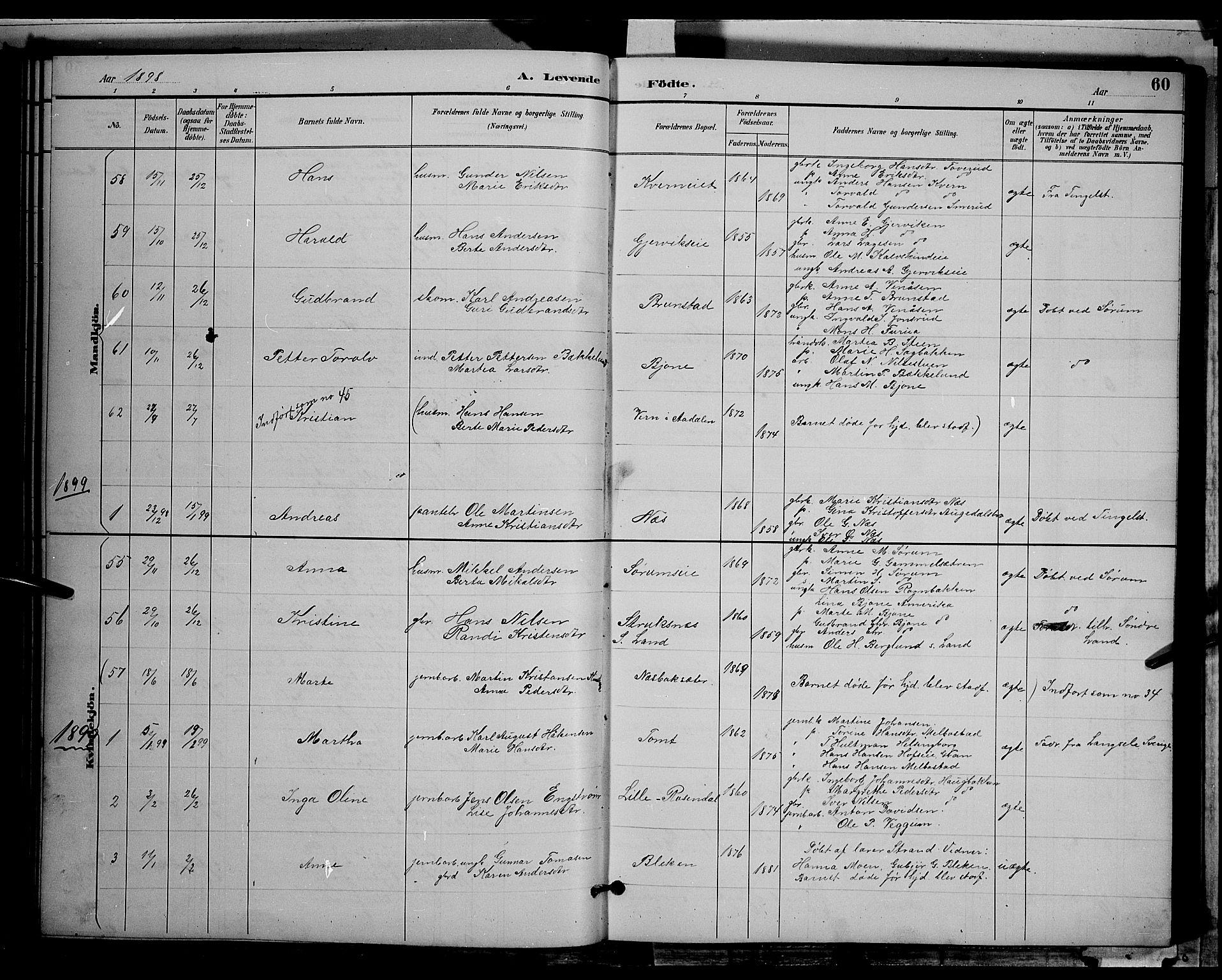 SAH, Gran prestekontor, Klokkerbok nr. 4, 1890-1899, s. 60