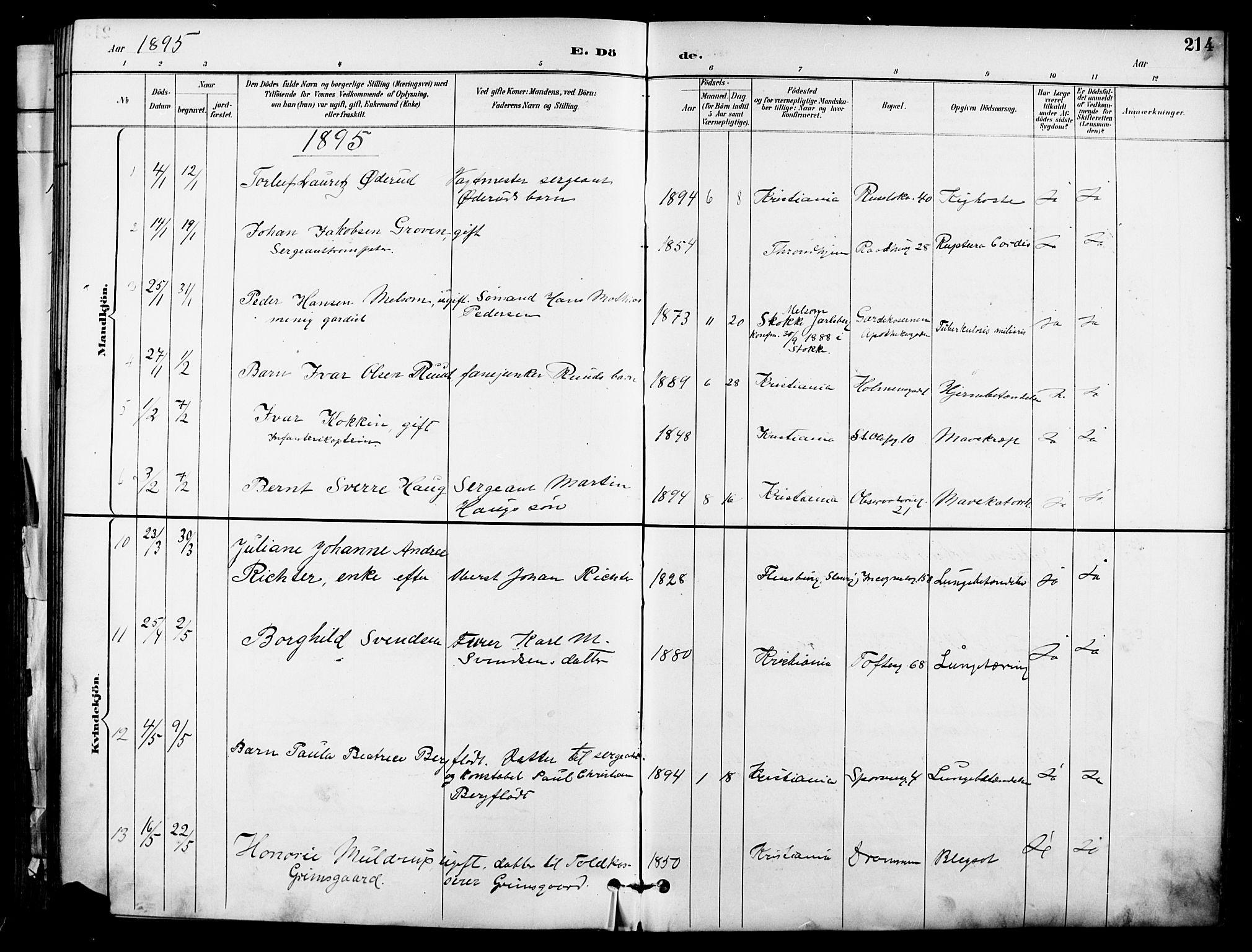 SAO, Garnisonsmenigheten Kirkebøker, F/Fa/L0013: Ministerialbok nr. 13, 1894-1904, s. 214
