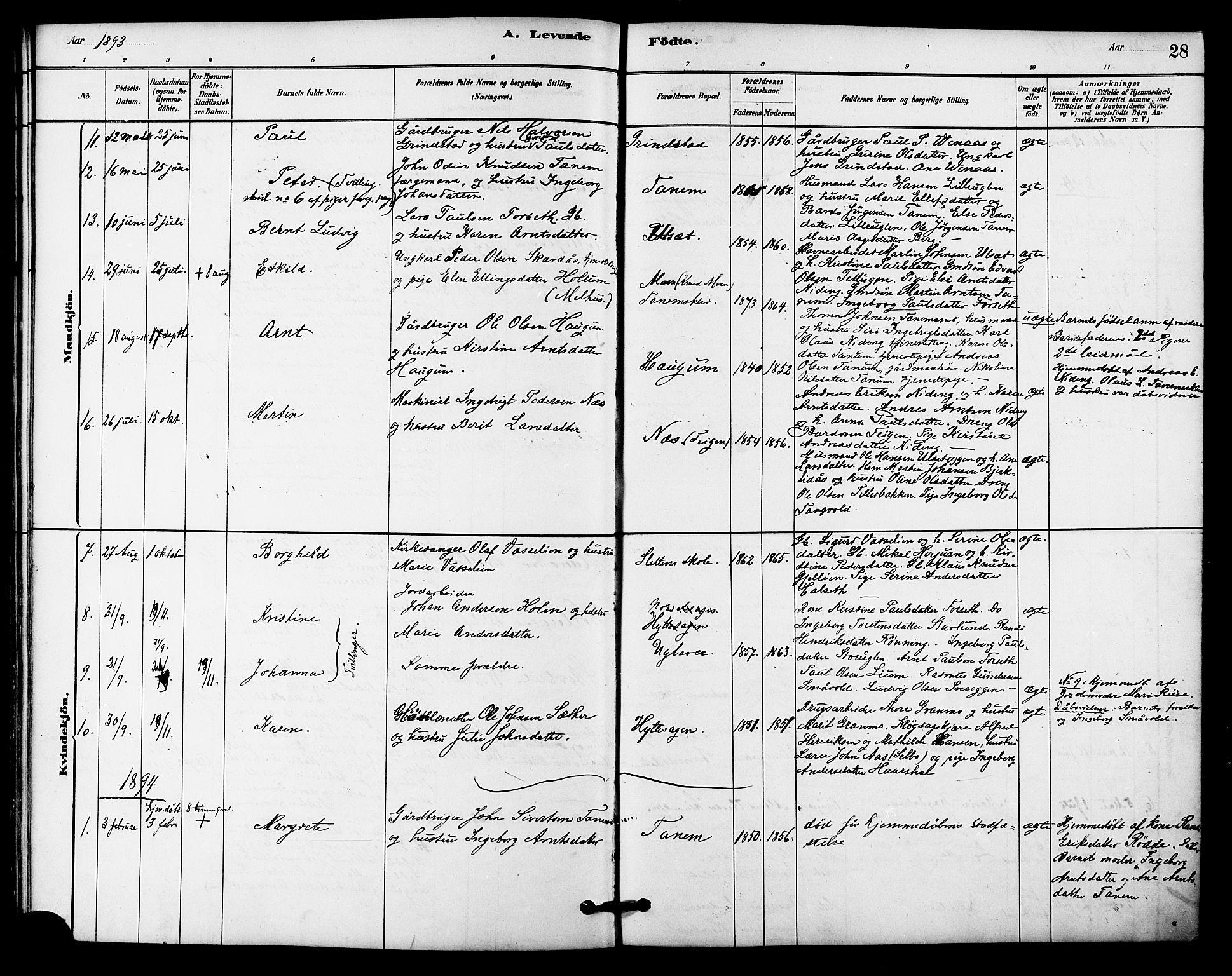 SAT, Ministerialprotokoller, klokkerbøker og fødselsregistre - Sør-Trøndelag, 618/L0444: Ministerialbok nr. 618A07, 1880-1898, s. 28