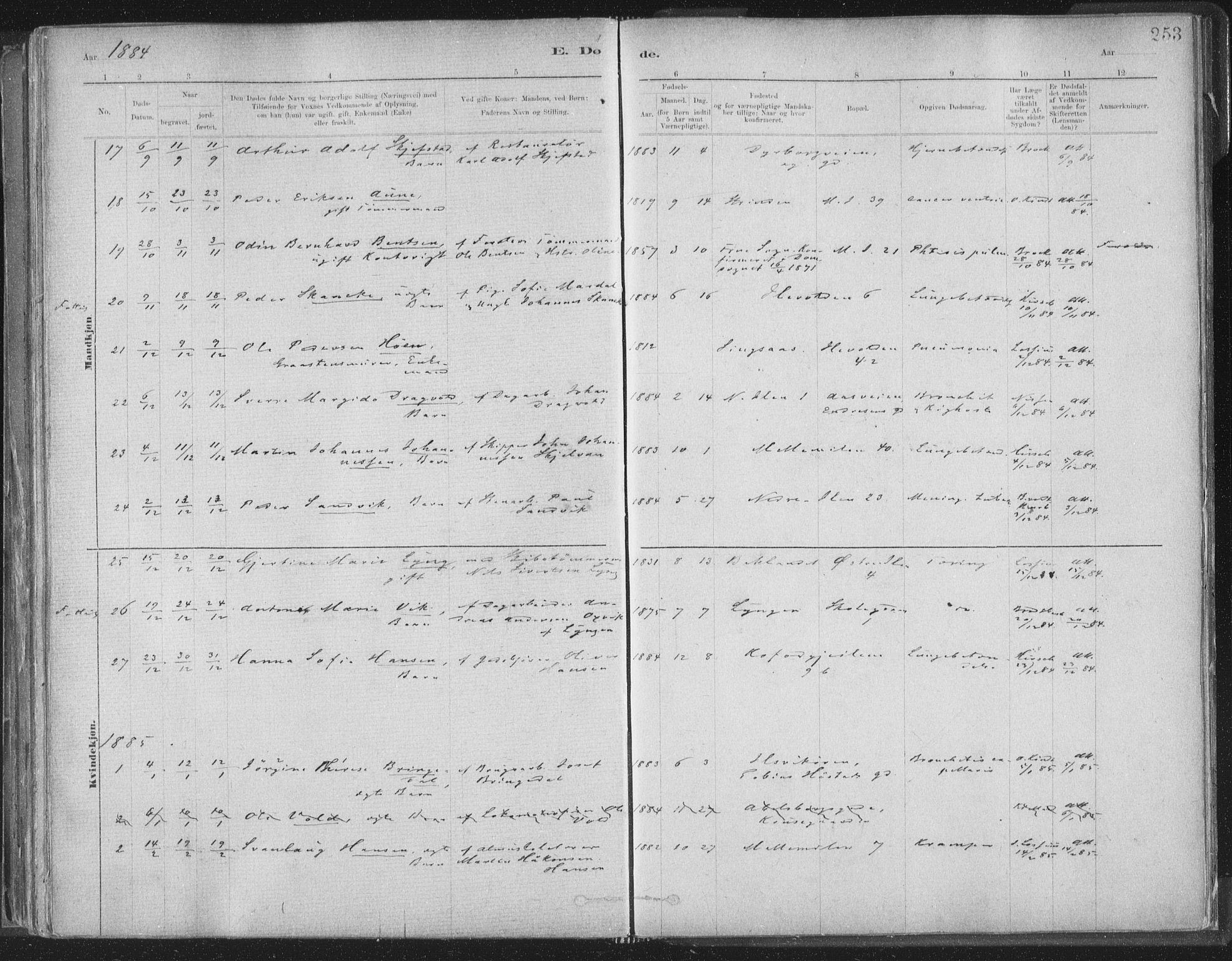 SAT, Ministerialprotokoller, klokkerbøker og fødselsregistre - Sør-Trøndelag, 603/L0162: Ministerialbok nr. 603A01, 1879-1895, s. 253
