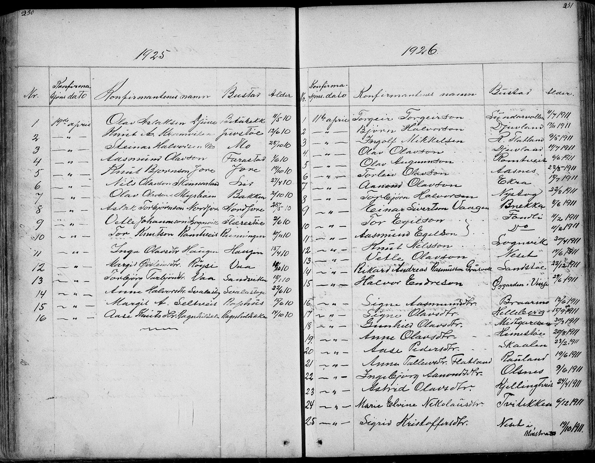 SAKO, Rauland kirkebøker, G/Ga/L0002: Klokkerbok nr. I 2, 1849-1935, s. 250-251