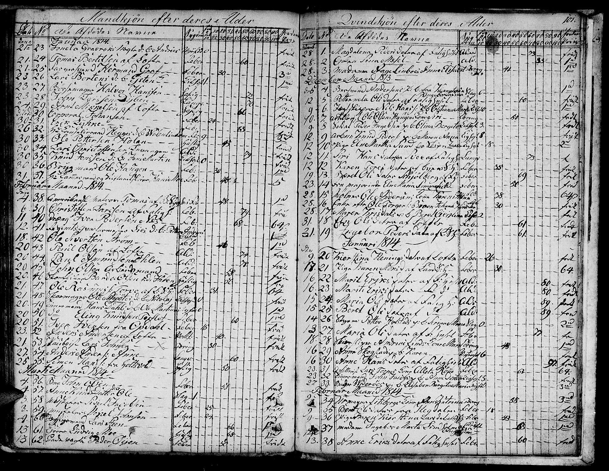 SAT, Ministerialprotokoller, klokkerbøker og fødselsregistre - Sør-Trøndelag, 601/L0040: Ministerialbok nr. 601A08, 1783-1818, s. 101