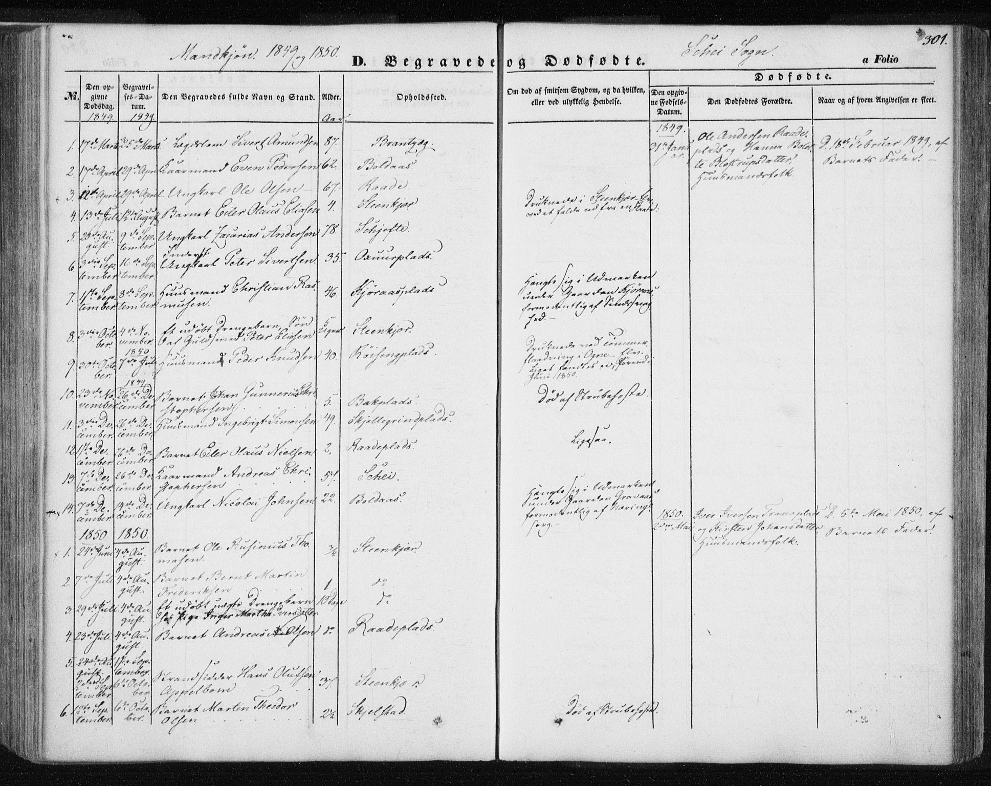 SAT, Ministerialprotokoller, klokkerbøker og fødselsregistre - Nord-Trøndelag, 735/L0342: Ministerialbok nr. 735A07 /2, 1849-1862, s. 301